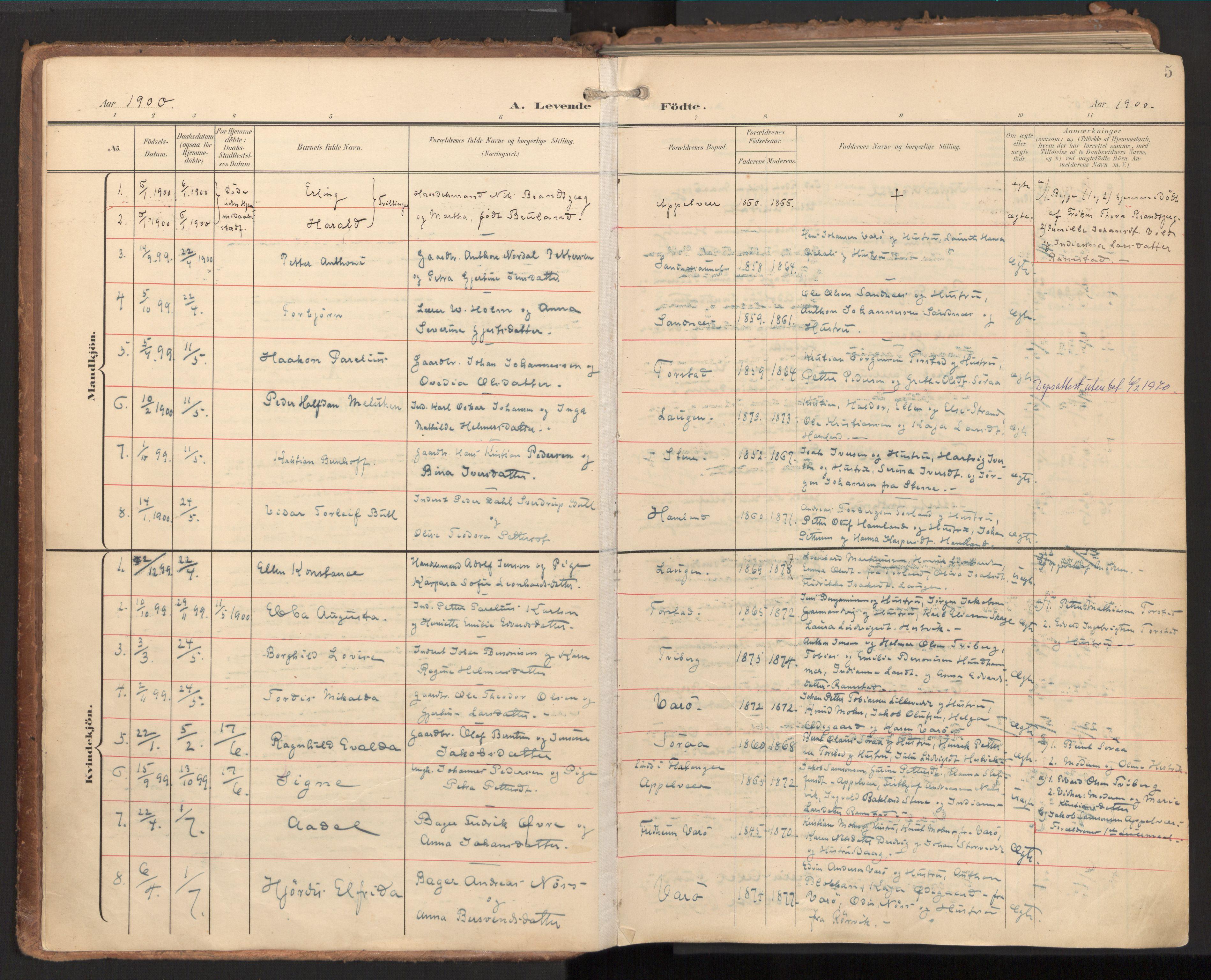 SAT, Ministerialprotokoller, klokkerbøker og fødselsregistre - Nord-Trøndelag, 784/L0677: Ministerialbok nr. 784A12, 1900-1920, s. 5