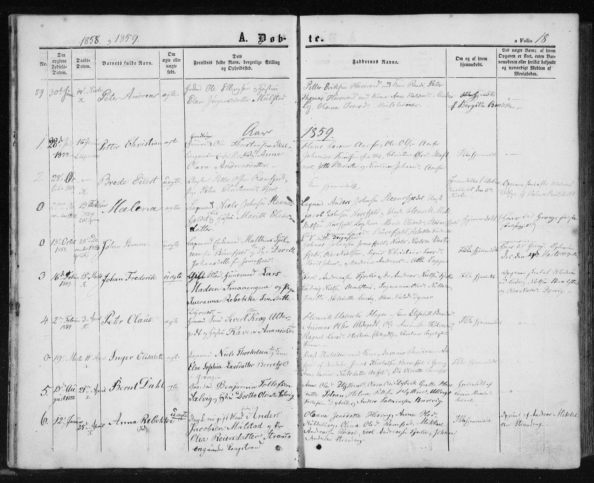SAT, Ministerialprotokoller, klokkerbøker og fødselsregistre - Nord-Trøndelag, 780/L0641: Ministerialbok nr. 780A06, 1857-1874, s. 18
