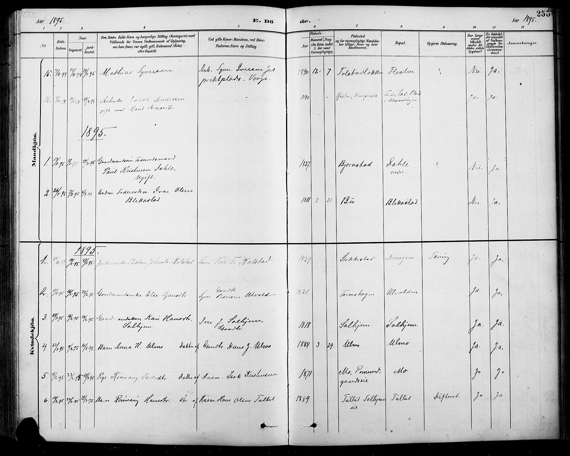 SAH, Sel prestekontor, Klokkerbok nr. 1, 1894-1923, s. 255