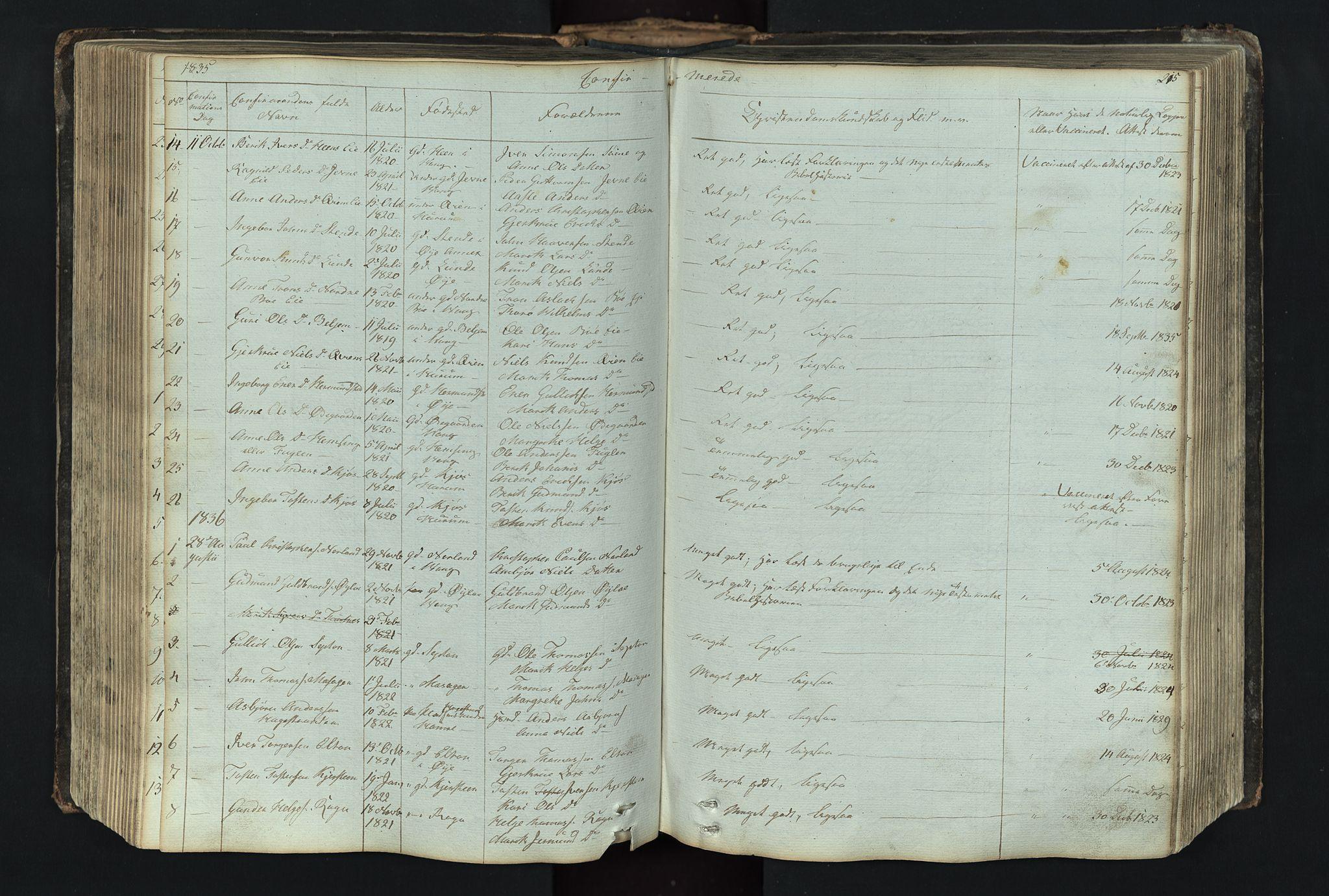 SAH, Vang prestekontor, Valdres, Klokkerbok nr. 4, 1835-1892, s. 215