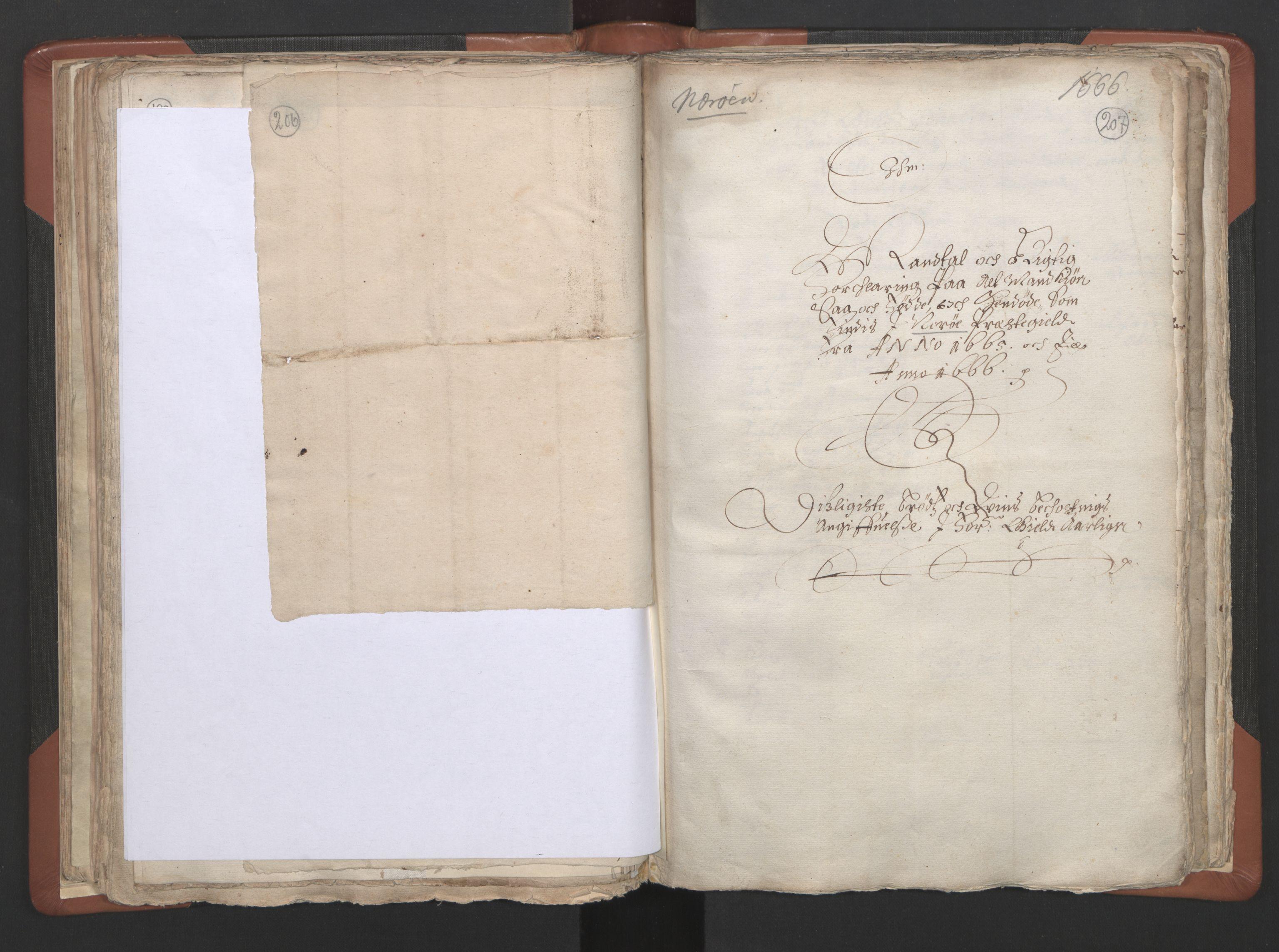RA, Sogneprestenes manntall 1664-1666, nr. 34: Namdal prosti, 1664-1666, s. 206-207