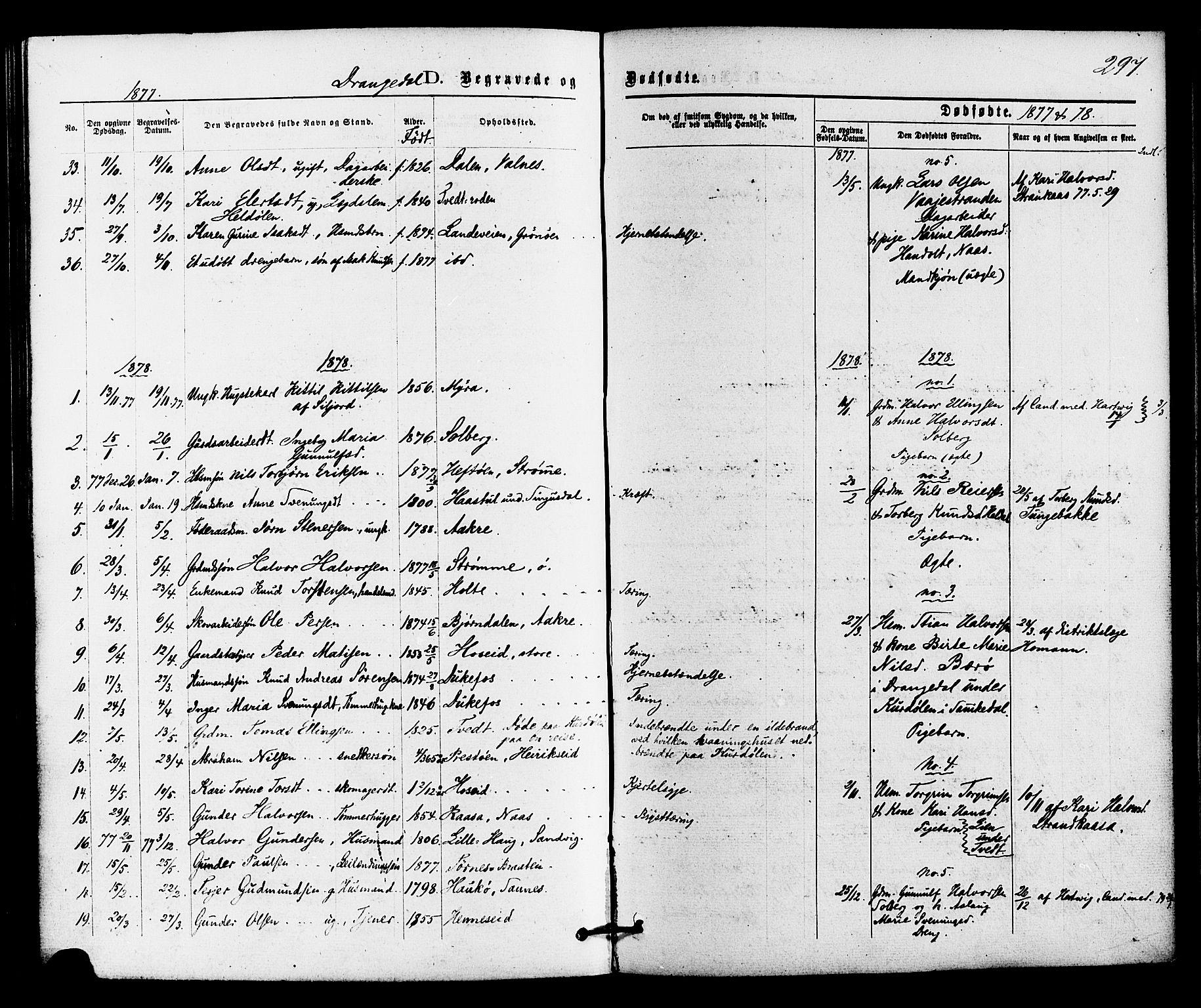 SAKO, Drangedal kirkebøker, F/Fa/L0009: Ministerialbok nr. 9 /1, 1872-1884, s. 297