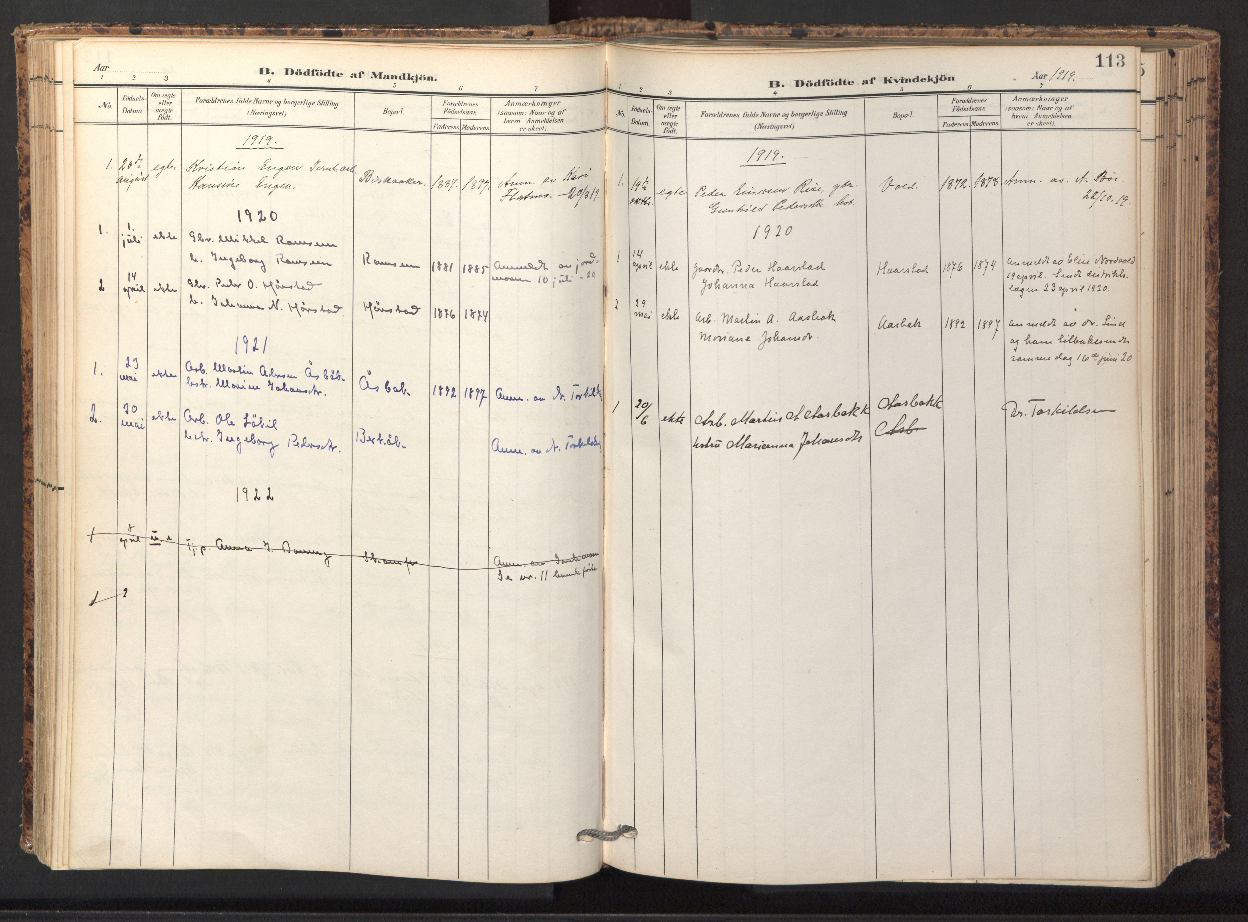 SAT, Ministerialprotokoller, klokkerbøker og fødselsregistre - Sør-Trøndelag, 674/L0873: Ministerialbok nr. 674A05, 1908-1923, s. 113