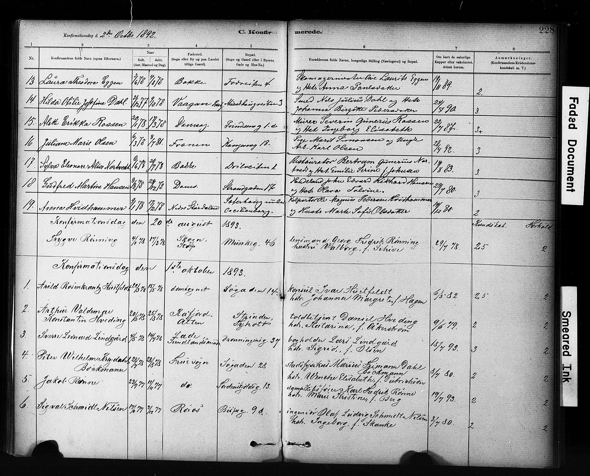SAT, Ministerialprotokoller, klokkerbøker og fødselsregistre - Sør-Trøndelag, 601/L0071: Residerende kapellans bok nr. 601B04, 1882-1931, s. 228