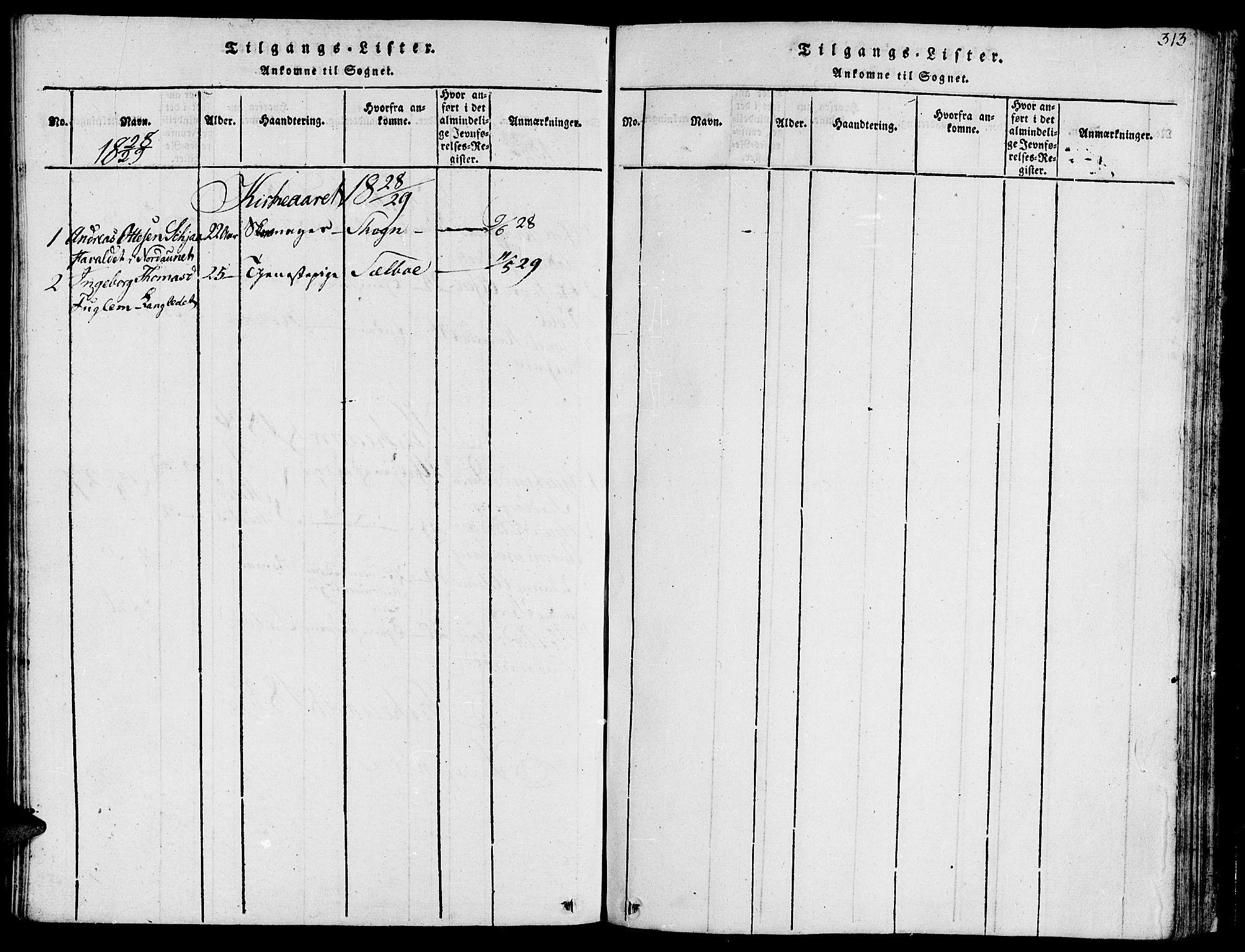 SAT, Ministerialprotokoller, klokkerbøker og fødselsregistre - Sør-Trøndelag, 685/L0954: Ministerialbok nr. 685A03 /1, 1817-1829, s. 313