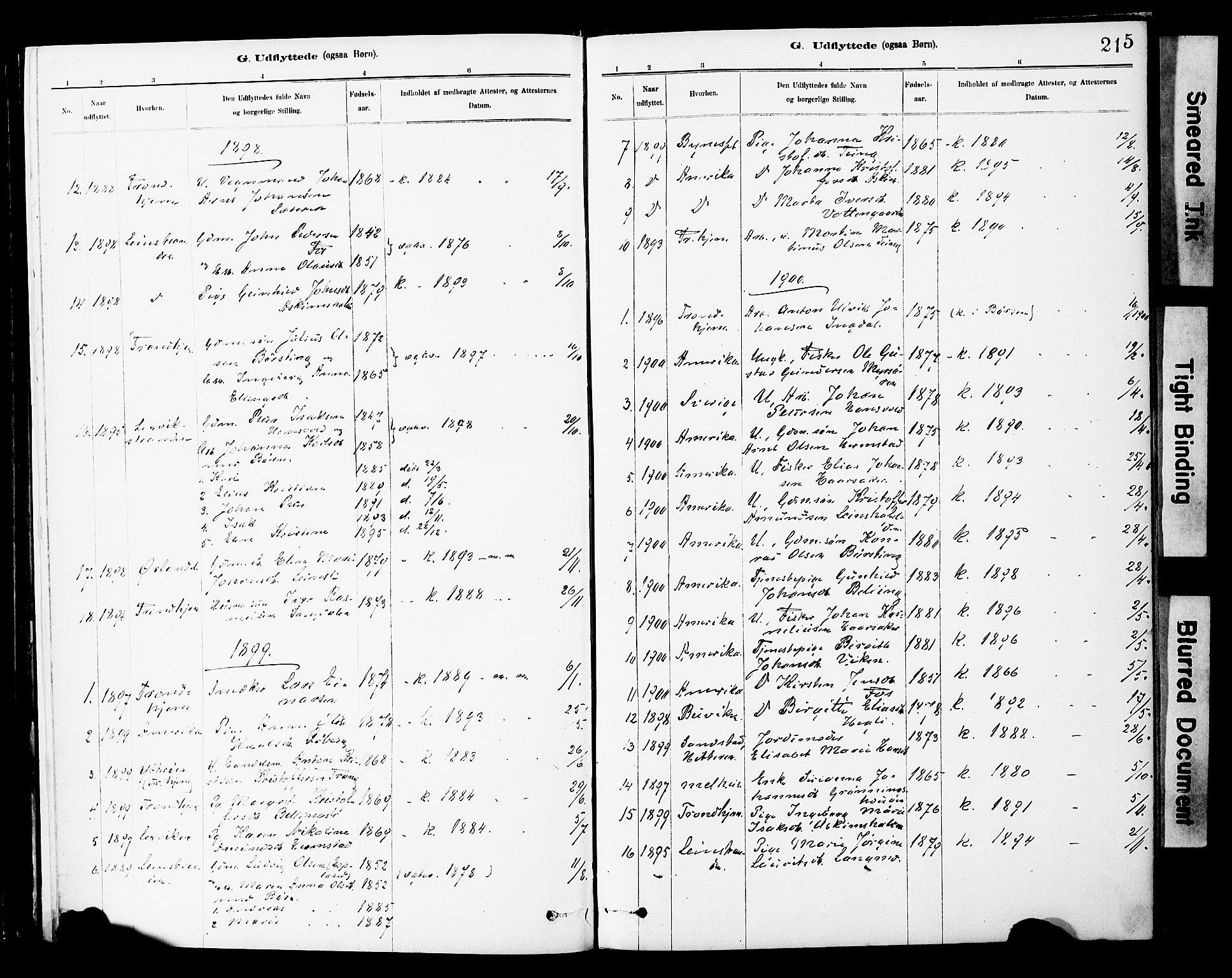 SAT, Ministerialprotokoller, klokkerbøker og fødselsregistre - Sør-Trøndelag, 646/L0615: Ministerialbok nr. 646A13, 1885-1900, s. 215