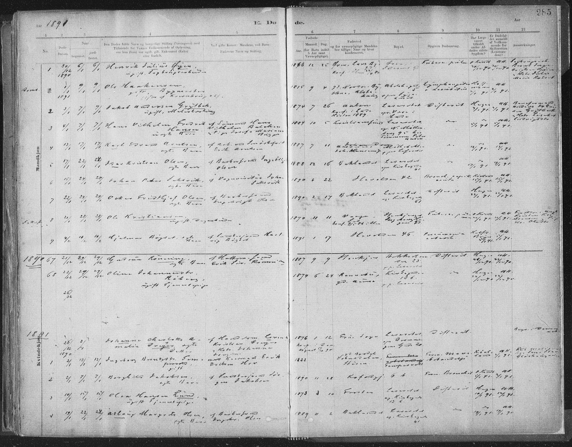 SAT, Ministerialprotokoller, klokkerbøker og fødselsregistre - Sør-Trøndelag, 603/L0162: Ministerialbok nr. 603A01, 1879-1895, s. 285