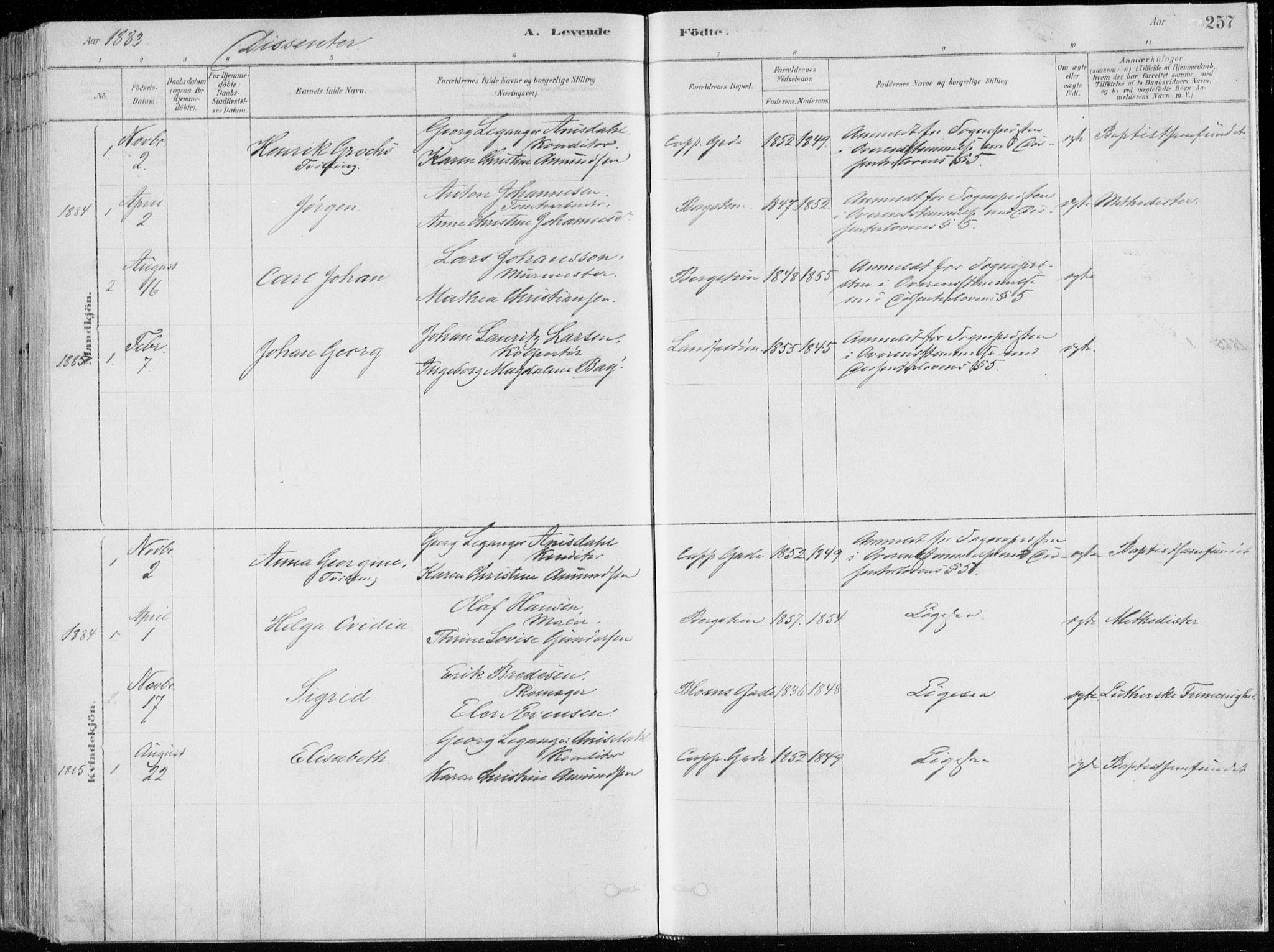 SAKO, Bragernes kirkebøker, F/Fb/L0006a: Ministerialbok nr. II 6A, 1878-1885, s. 257
