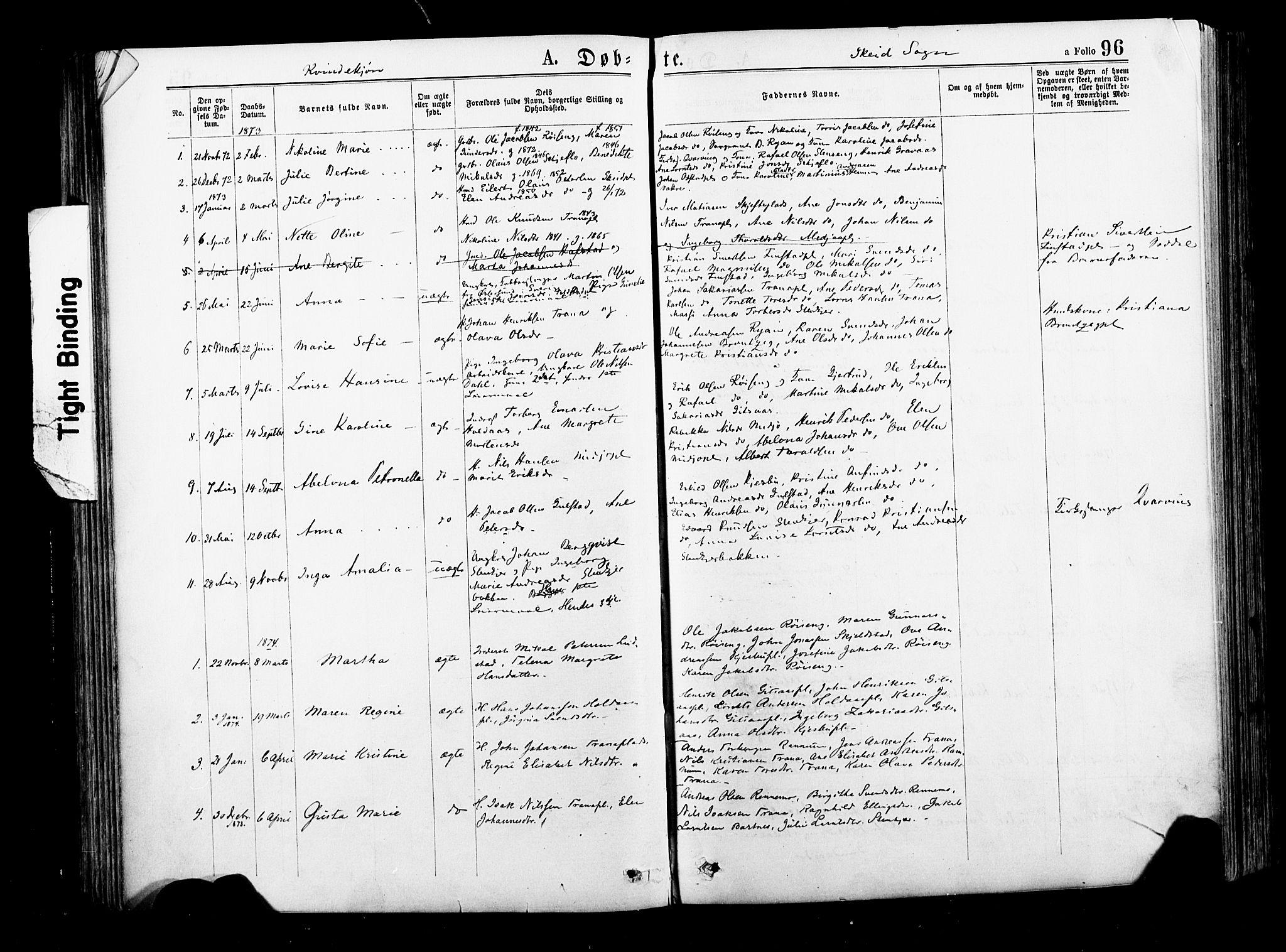 SAT, Ministerialprotokoller, klokkerbøker og fødselsregistre - Nord-Trøndelag, 735/L0348: Ministerialbok nr. 735A09 /2, 1873-1883, s. 96