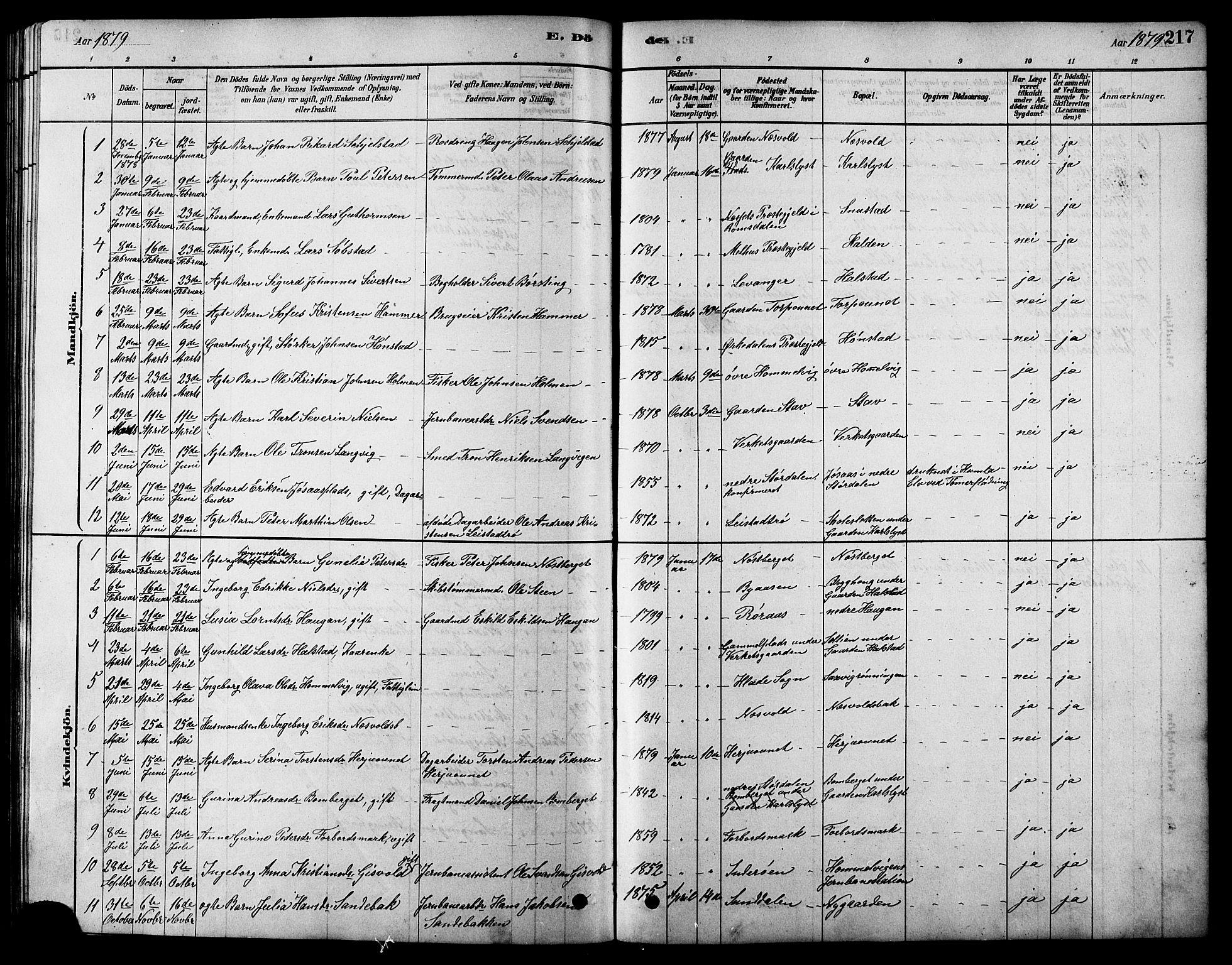 SAT, Ministerialprotokoller, klokkerbøker og fødselsregistre - Sør-Trøndelag, 616/L0423: Klokkerbok nr. 616C06, 1878-1903, s. 217