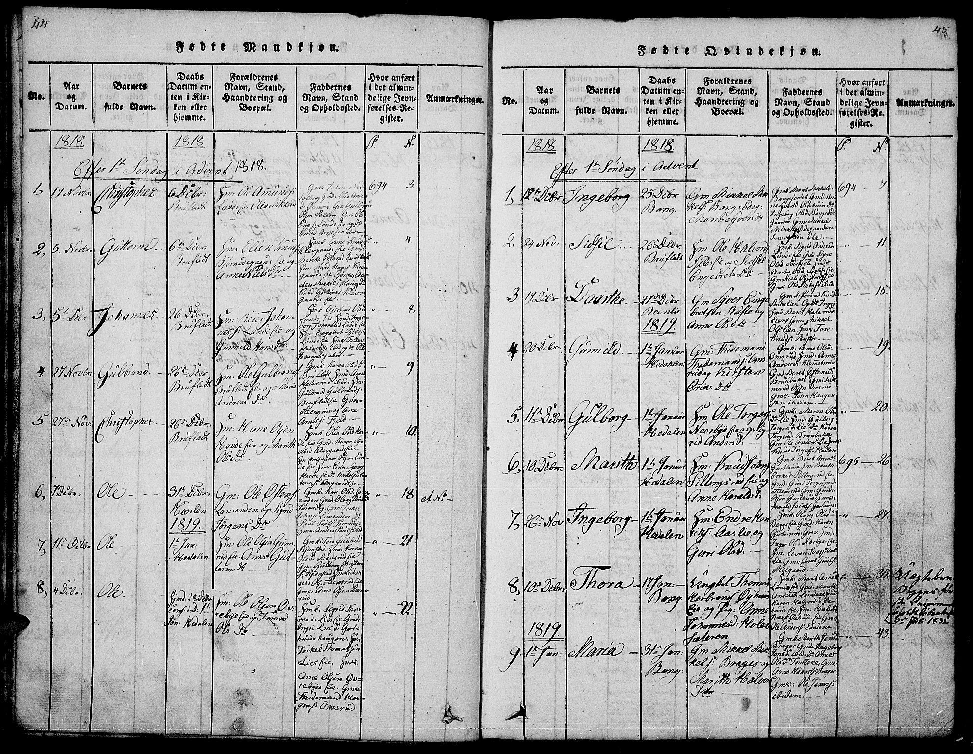 SAH, Sør-Aurdal prestekontor, Klokkerbok nr. 1, 1815-1826, s. 44-45