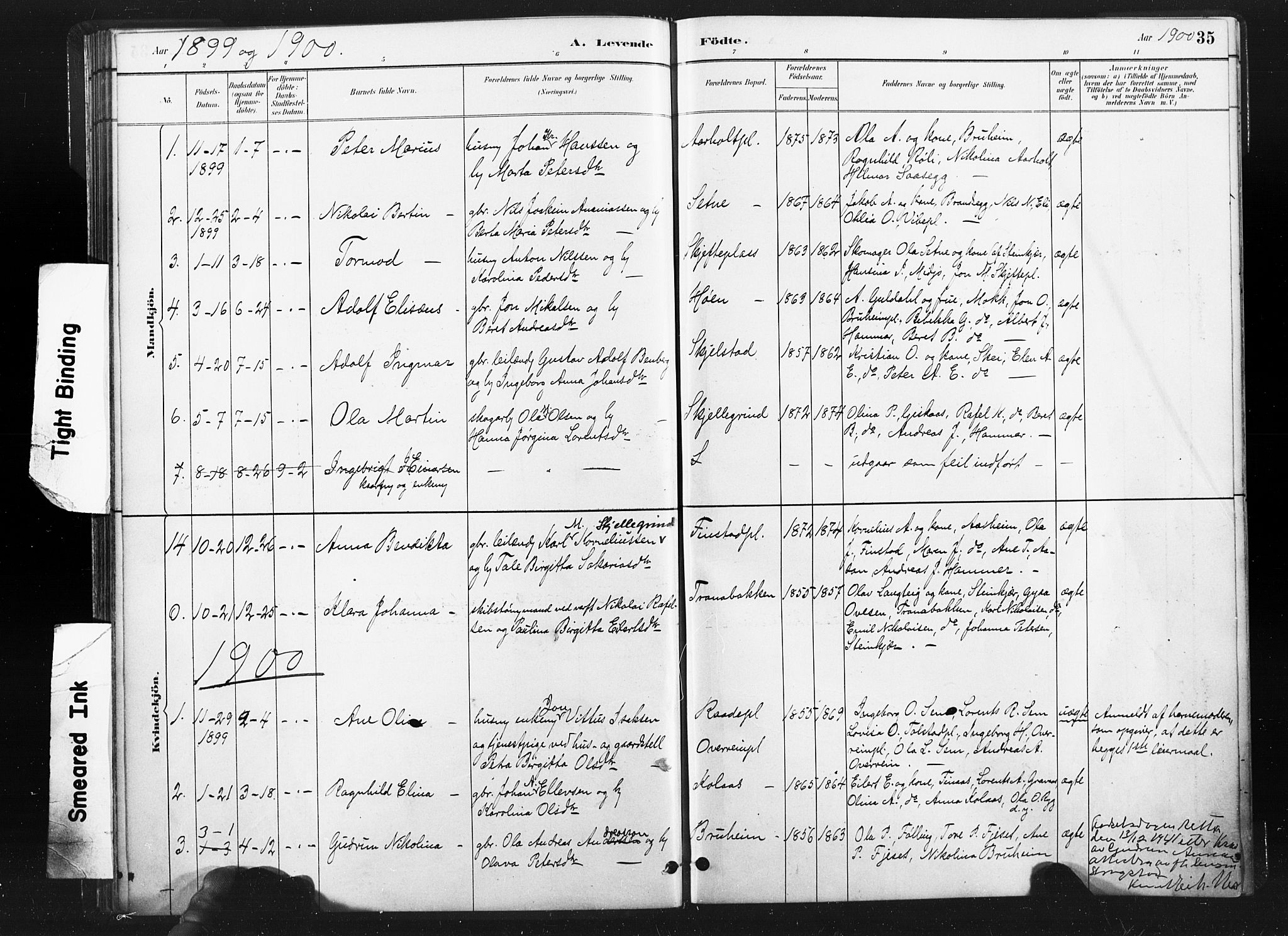 SAT, Ministerialprotokoller, klokkerbøker og fødselsregistre - Nord-Trøndelag, 736/L0361: Ministerialbok nr. 736A01, 1884-1906, s. 35