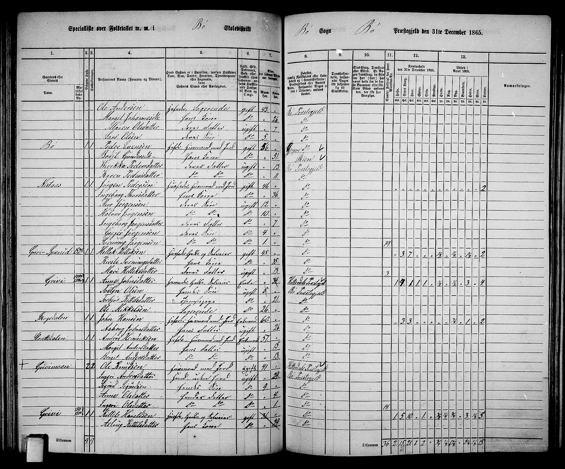 RA, Folketelling 1865 for 0821P Bø prestegjeld, 1865, s. 99