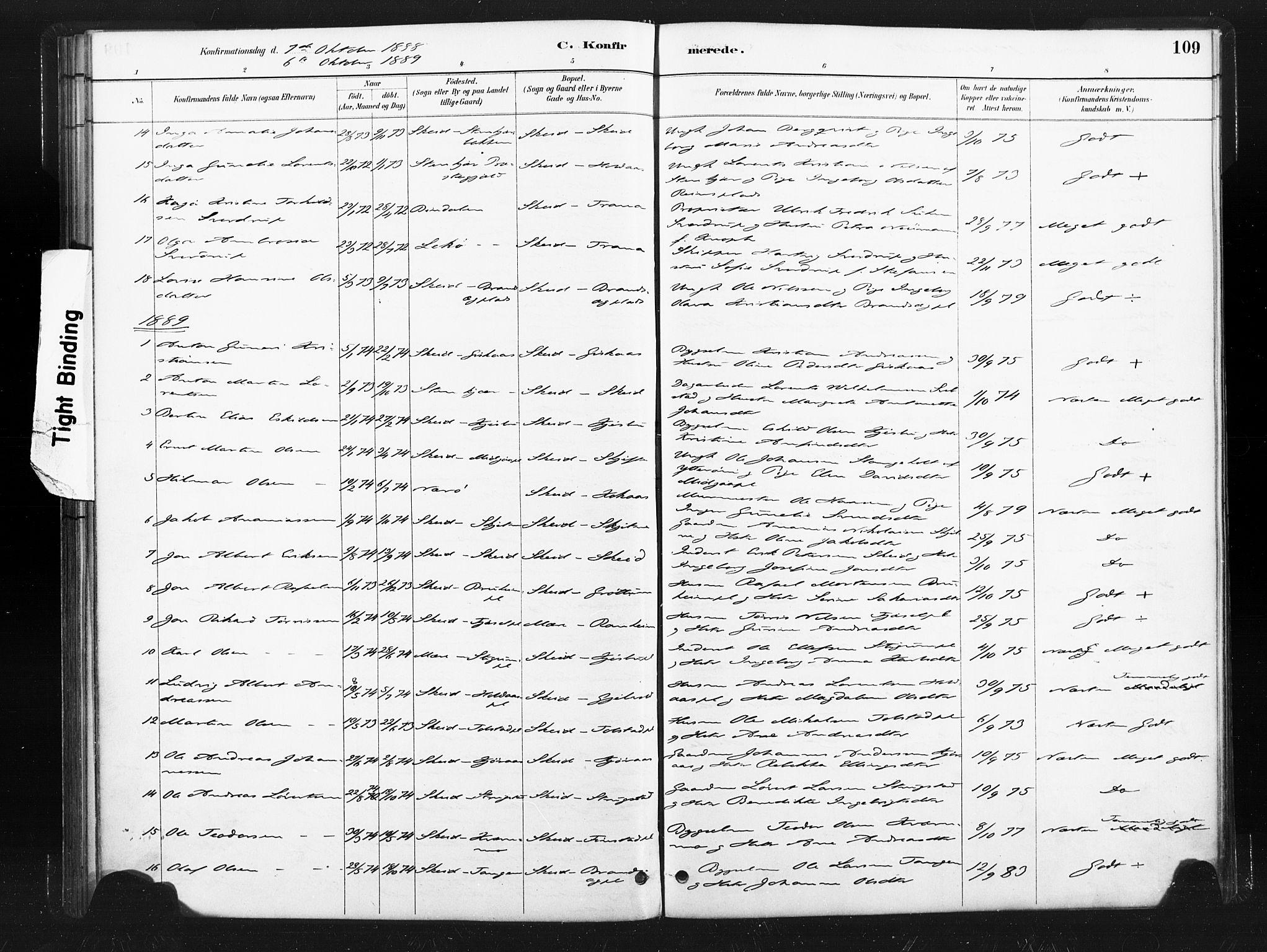 SAT, Ministerialprotokoller, klokkerbøker og fødselsregistre - Nord-Trøndelag, 736/L0361: Ministerialbok nr. 736A01, 1884-1906, s. 109