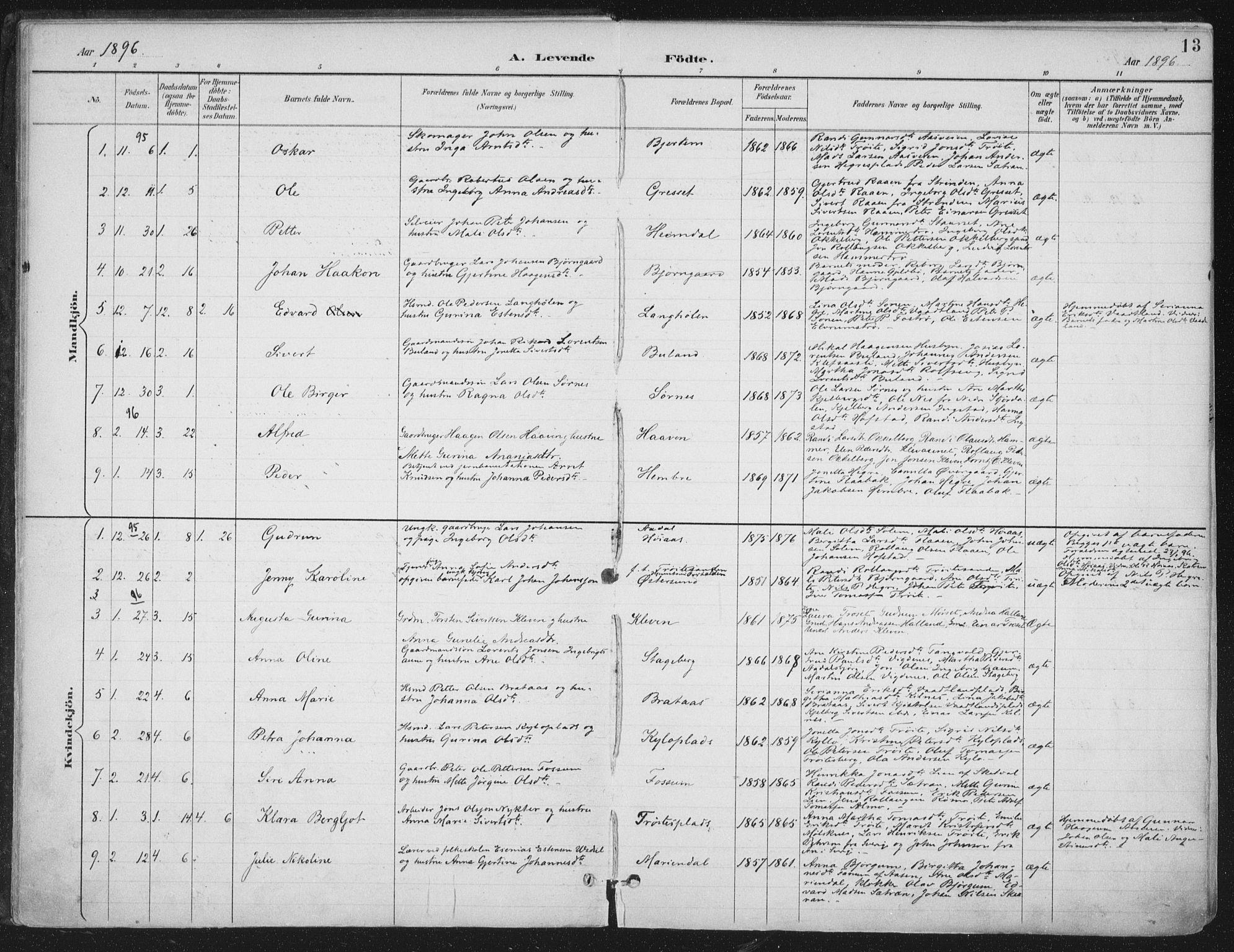 SAT, Ministerialprotokoller, klokkerbøker og fødselsregistre - Nord-Trøndelag, 703/L0031: Ministerialbok nr. 703A04, 1893-1914, s. 13