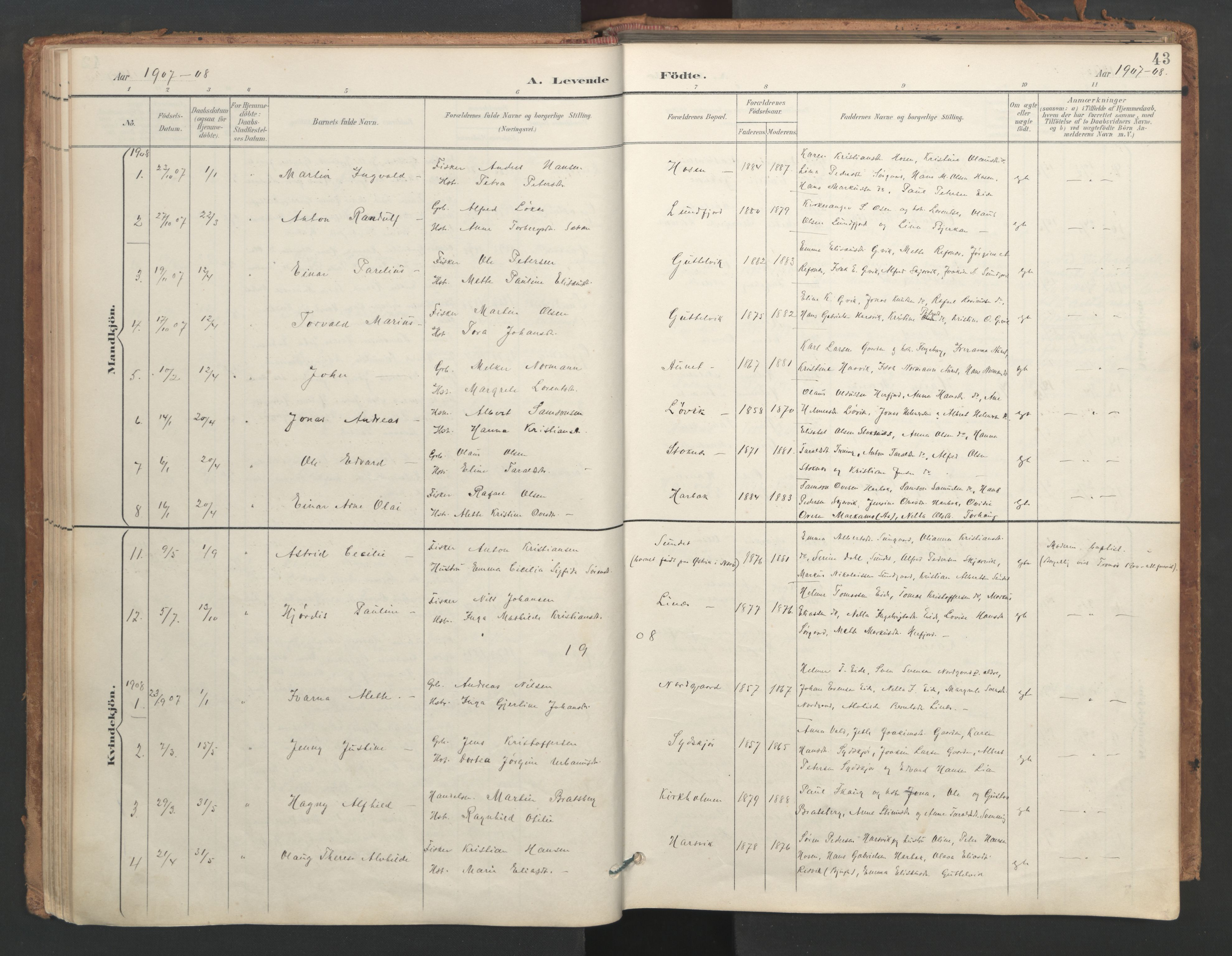 SAT, Ministerialprotokoller, klokkerbøker og fødselsregistre - Sør-Trøndelag, 656/L0693: Ministerialbok nr. 656A02, 1894-1913, s. 43