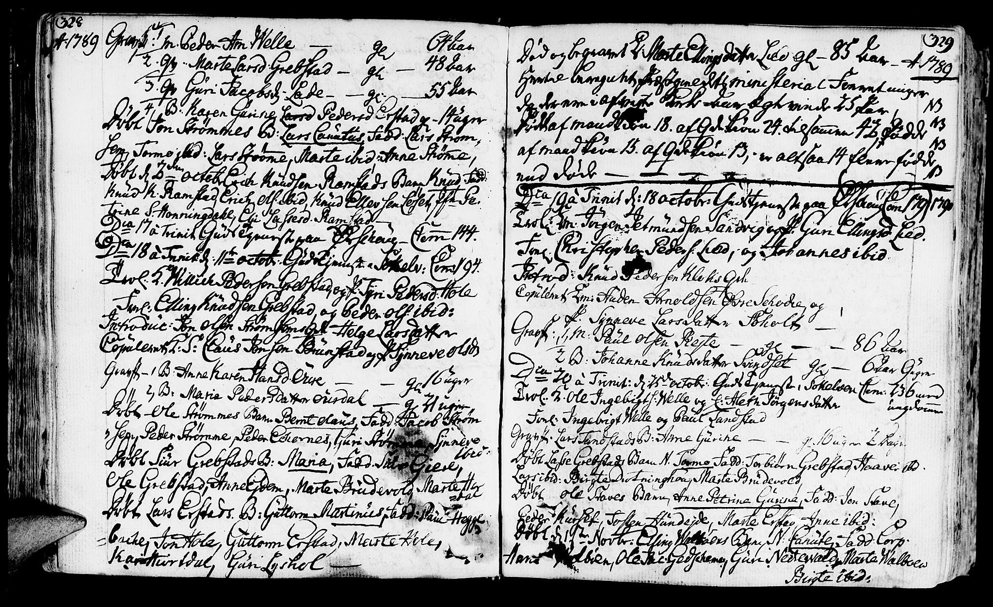 SAT, Ministerialprotokoller, klokkerbøker og fødselsregistre - Møre og Romsdal, 522/L0308: Ministerialbok nr. 522A03, 1773-1809, s. 328-329