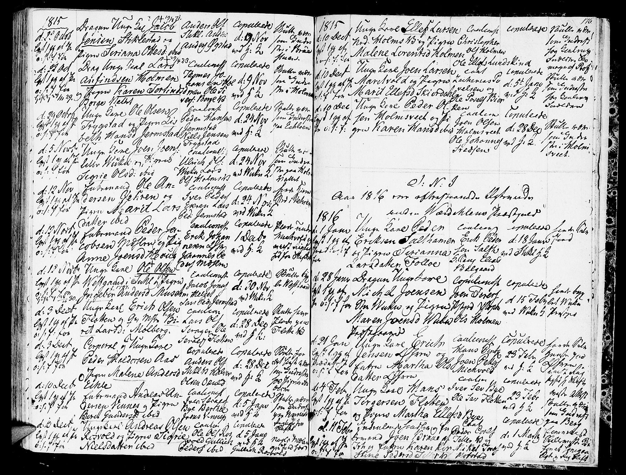 SAT, Ministerialprotokoller, klokkerbøker og fødselsregistre - Nord-Trøndelag, 723/L0233: Ministerialbok nr. 723A04, 1805-1816, s. 176
