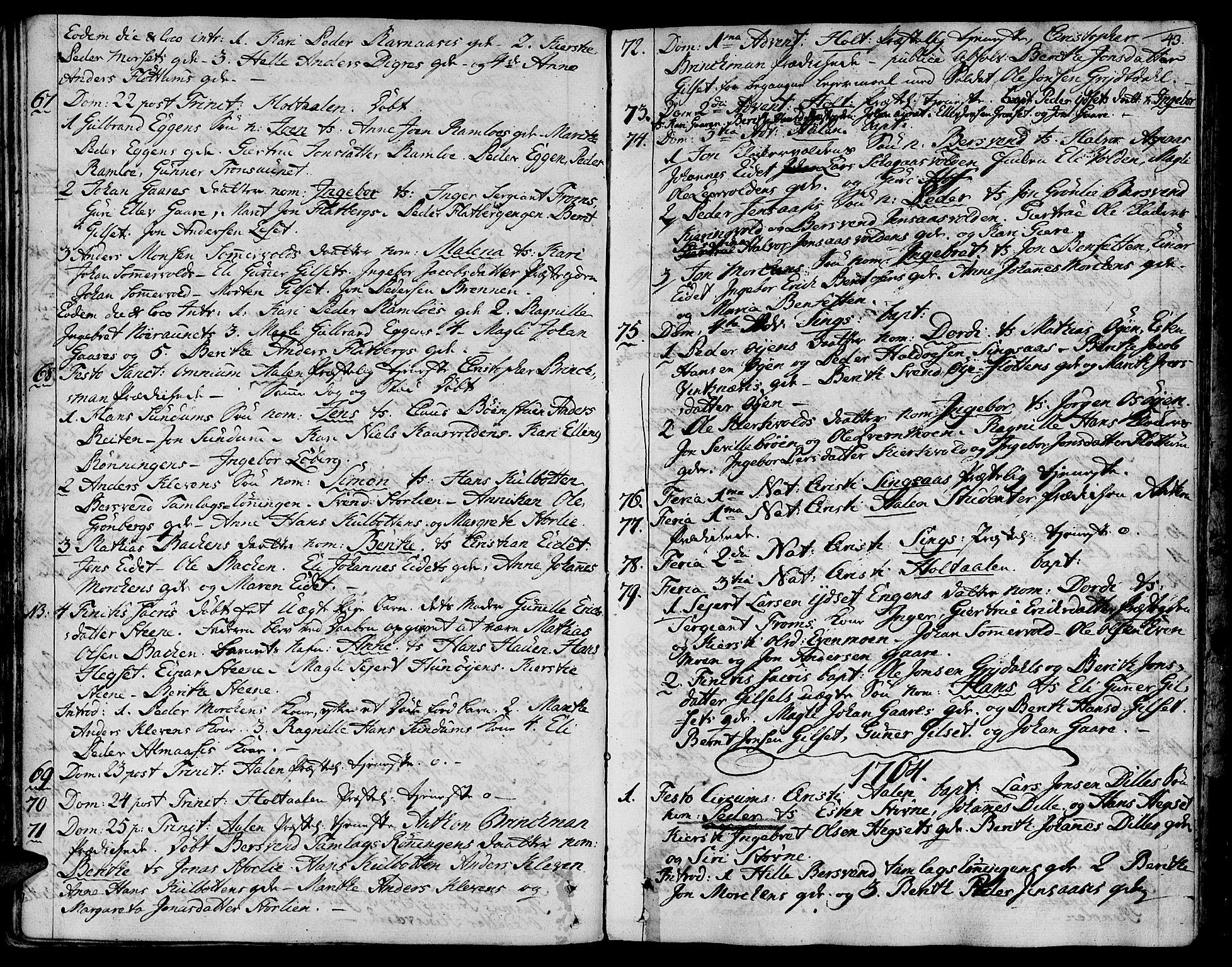SAT, Ministerialprotokoller, klokkerbøker og fødselsregistre - Sør-Trøndelag, 685/L0952: Ministerialbok nr. 685A01, 1745-1804, s. 43