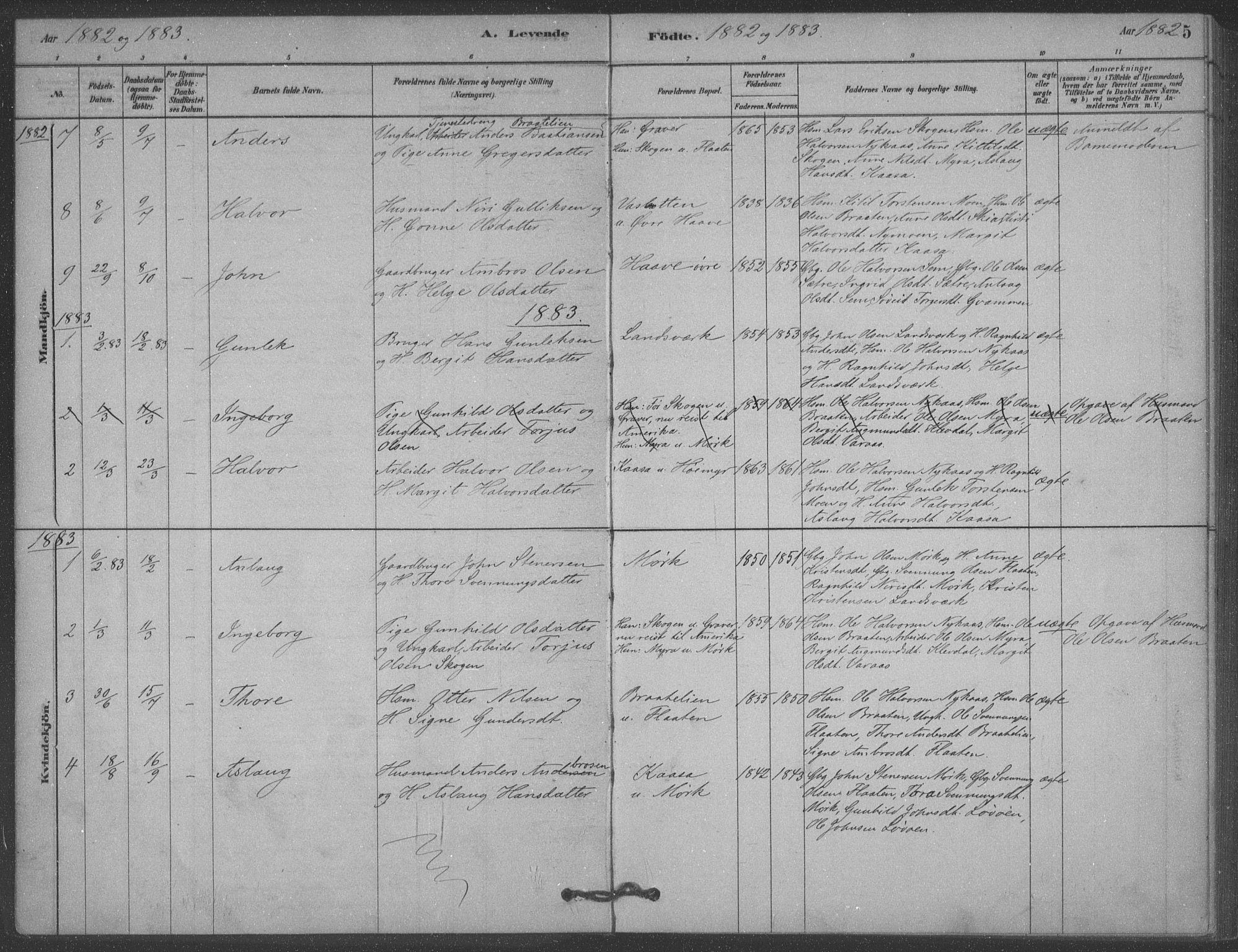 SAKO, Heddal kirkebøker, F/Fb/L0002: Ministerialbok nr. II 2, 1878-1913, s. 5