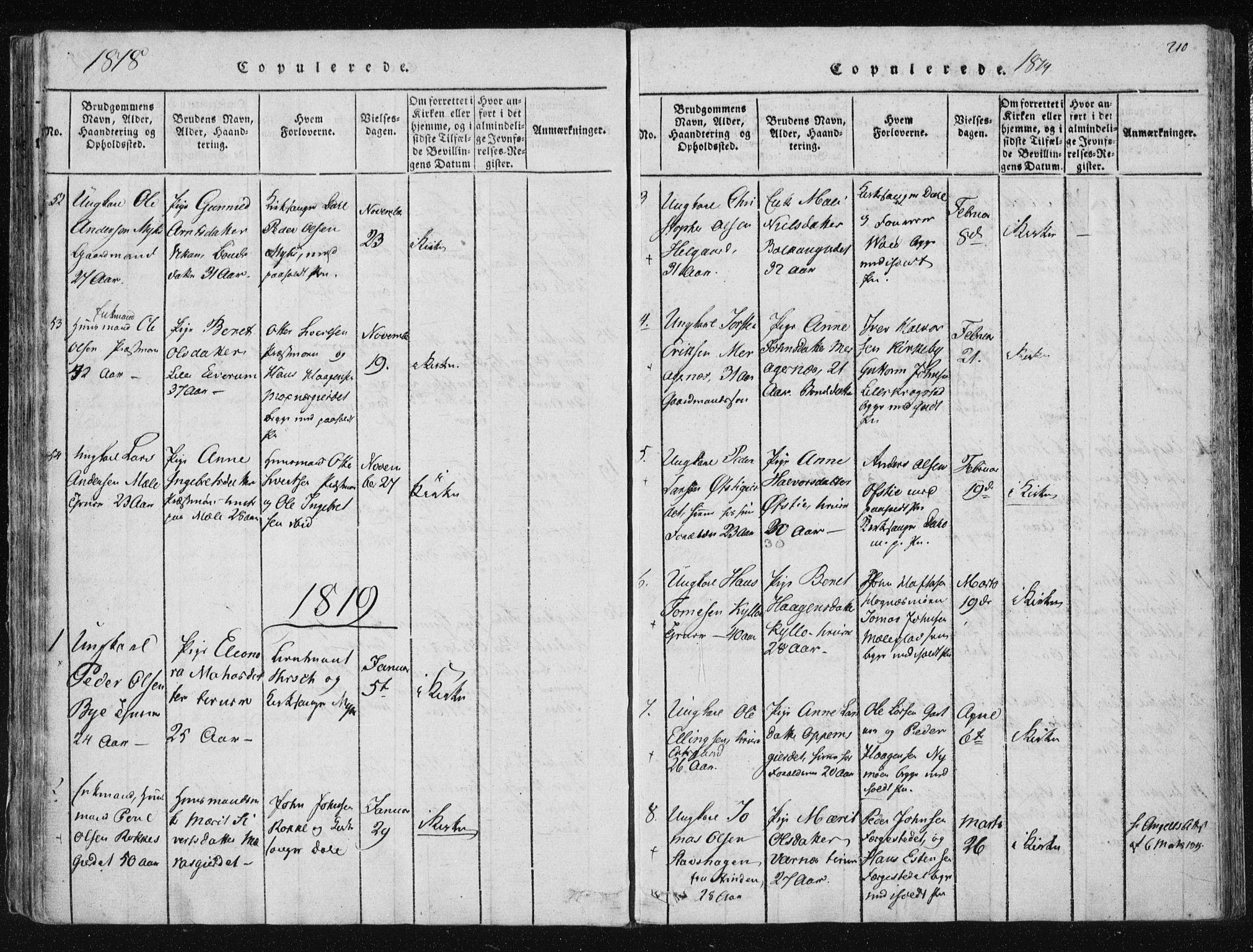 SAT, Ministerialprotokoller, klokkerbøker og fødselsregistre - Nord-Trøndelag, 709/L0061: Ministerialbok nr. 709A08 /1, 1815-1819, s. 210