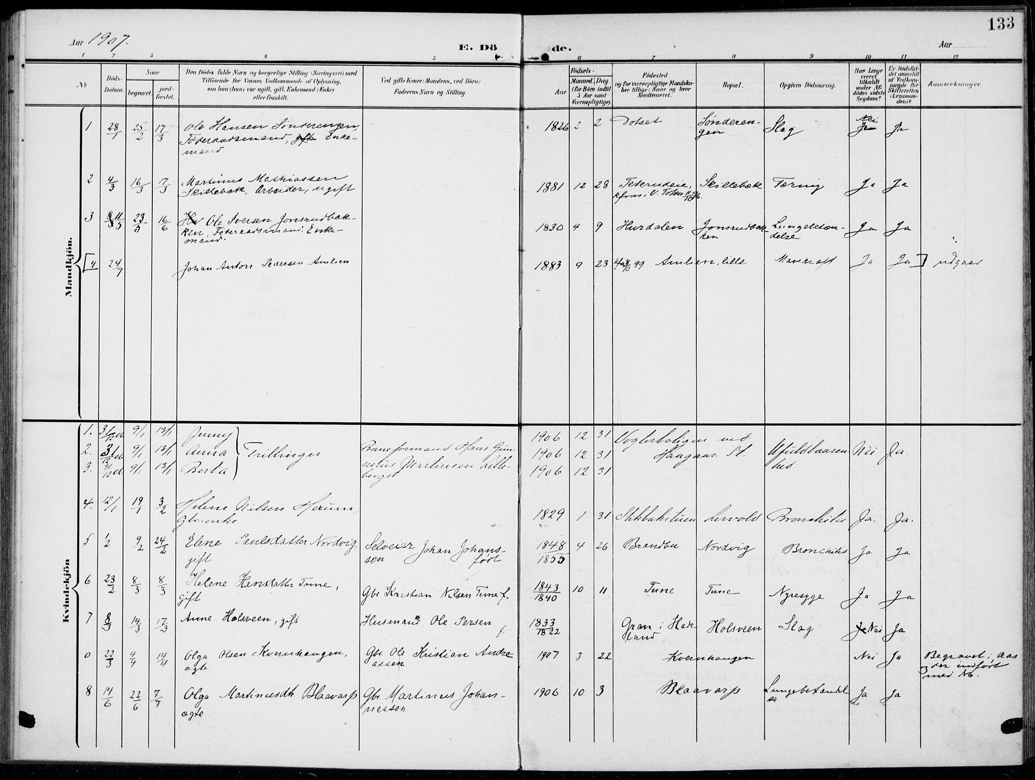 SAH, Kolbu prestekontor, Ministerialbok nr. 1, 1907-1923, s. 133