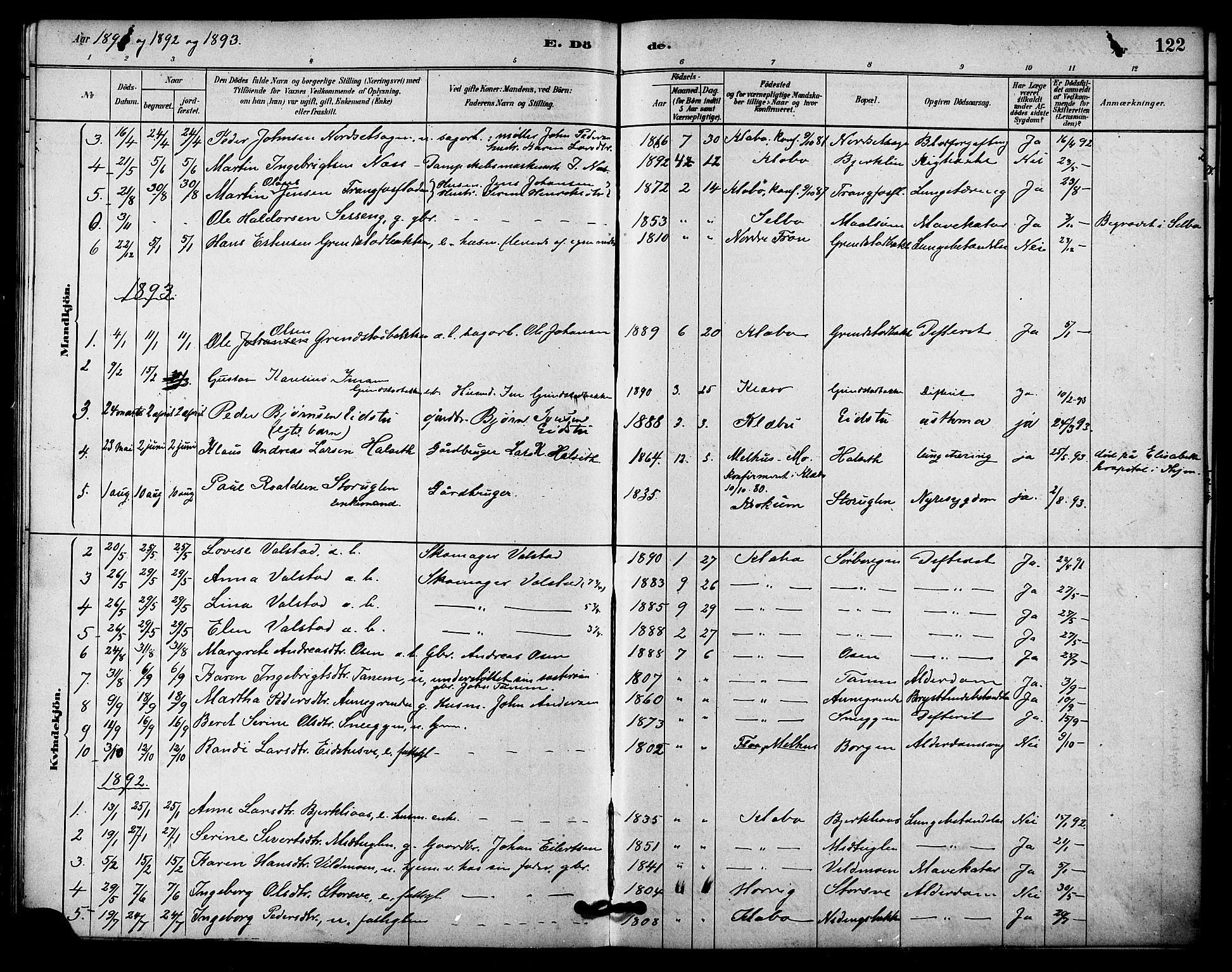 SAT, Ministerialprotokoller, klokkerbøker og fødselsregistre - Sør-Trøndelag, 618/L0444: Ministerialbok nr. 618A07, 1880-1898, s. 122