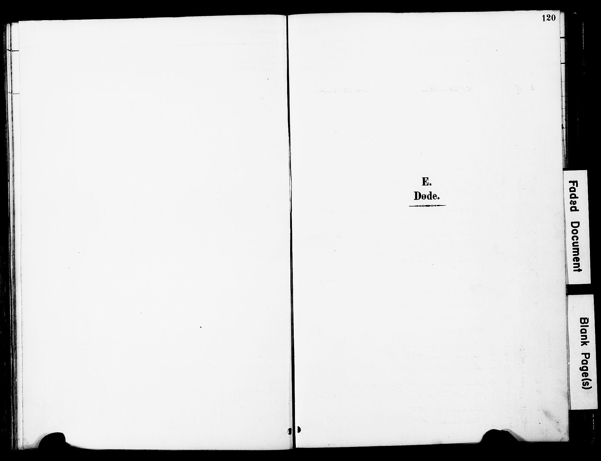 SAT, Ministerialprotokoller, klokkerbøker og fødselsregistre - Nord-Trøndelag, 741/L0396: Ministerialbok nr. 741A10, 1889-1901, s. 120