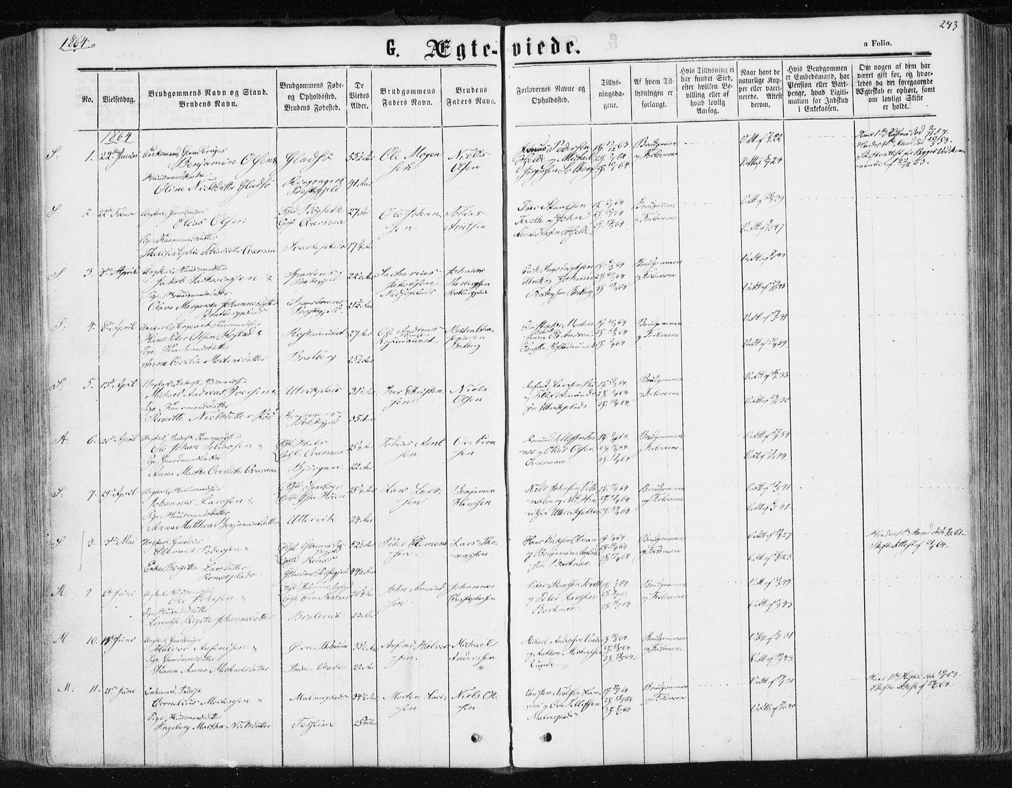 SAT, Ministerialprotokoller, klokkerbøker og fødselsregistre - Nord-Trøndelag, 741/L0394: Ministerialbok nr. 741A08, 1864-1877, s. 243