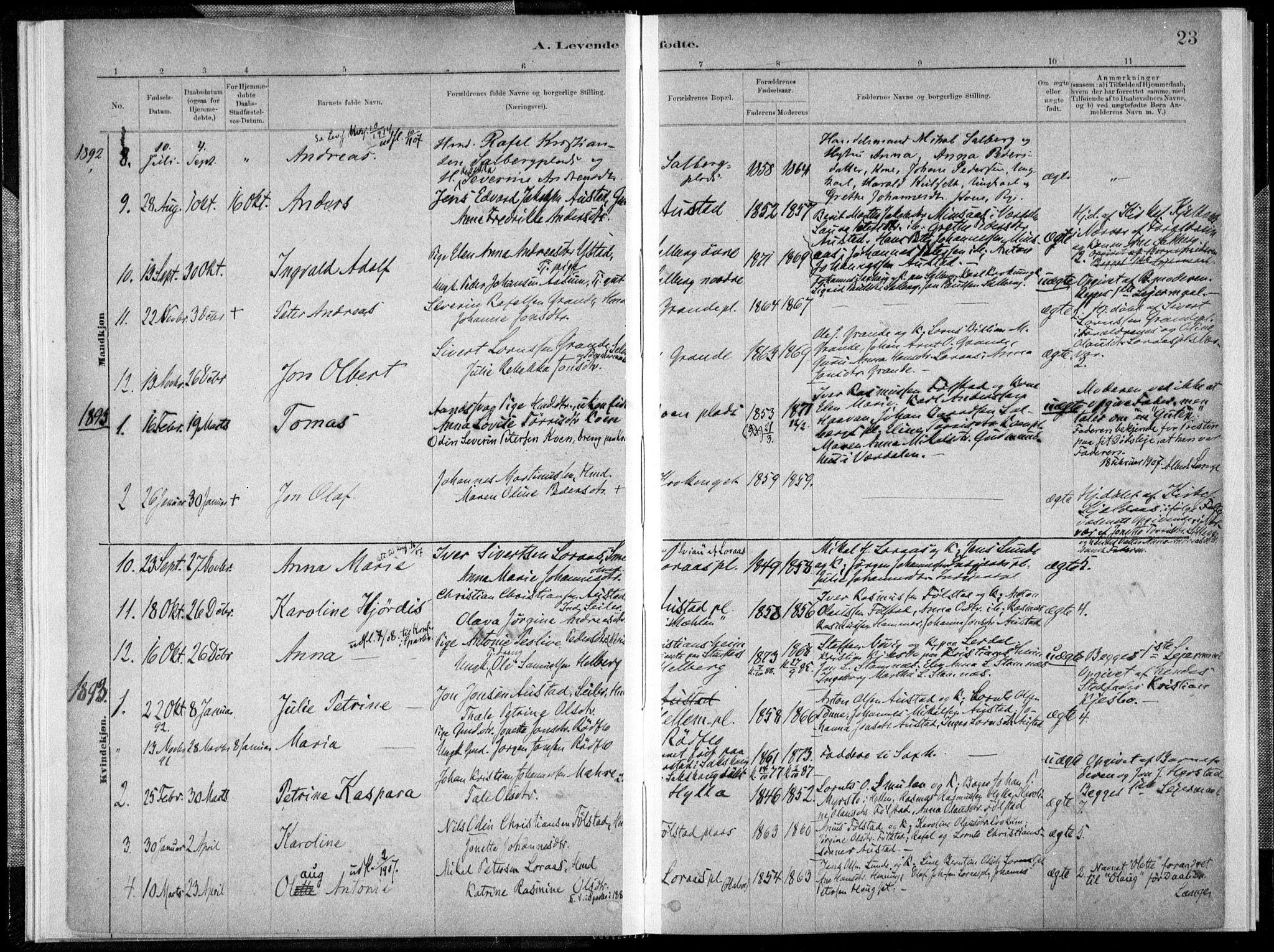 SAT, Ministerialprotokoller, klokkerbøker og fødselsregistre - Nord-Trøndelag, 731/L0309: Ministerialbok nr. 731A01, 1879-1918, s. 23