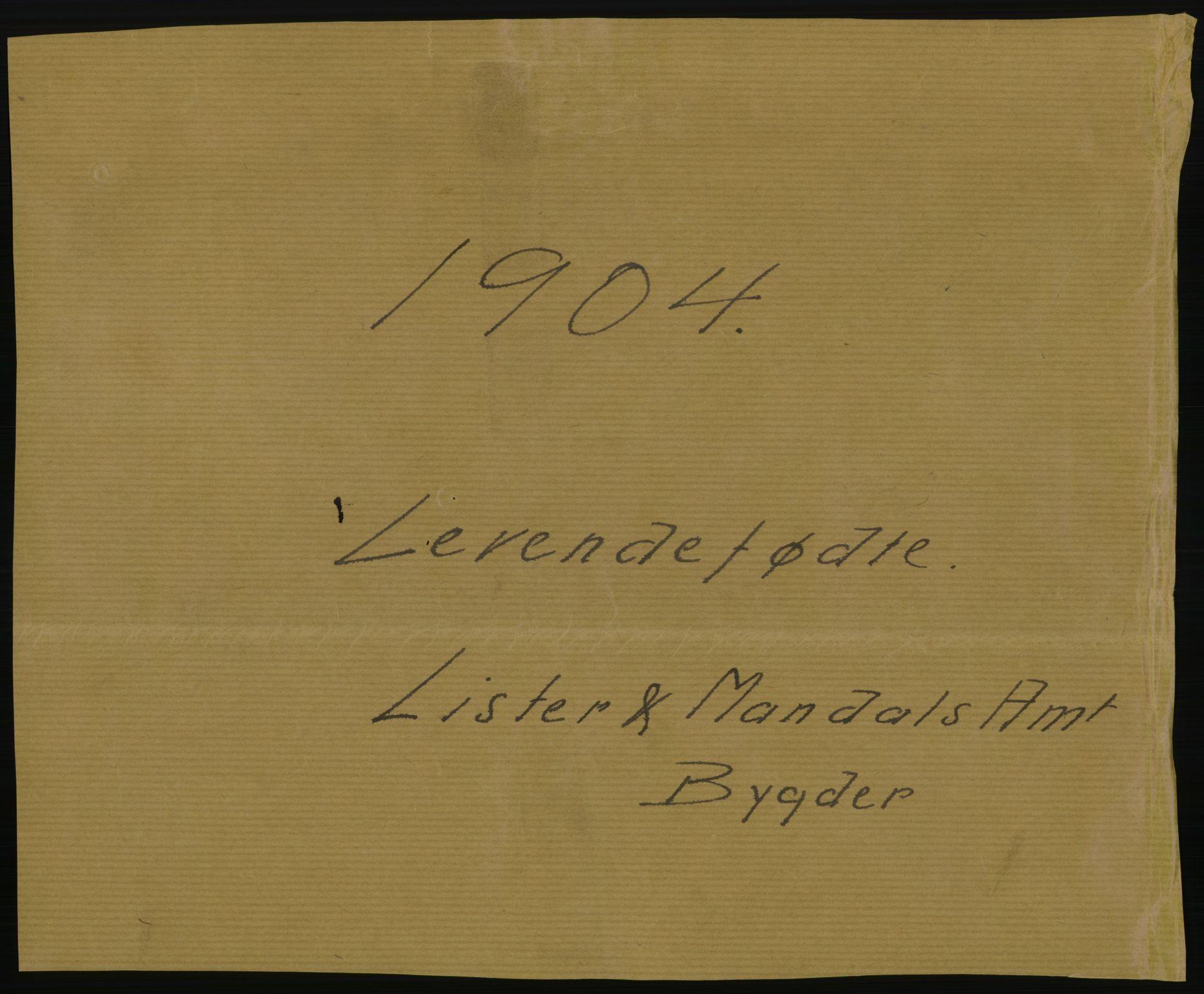 RA, Statistisk sentralbyrå, Sosiodemografiske emner, Befolkning, D/Df/Dfa/Dfab/L0011: Lister og Mandals amt: Fødte, gifte, døde, 1904