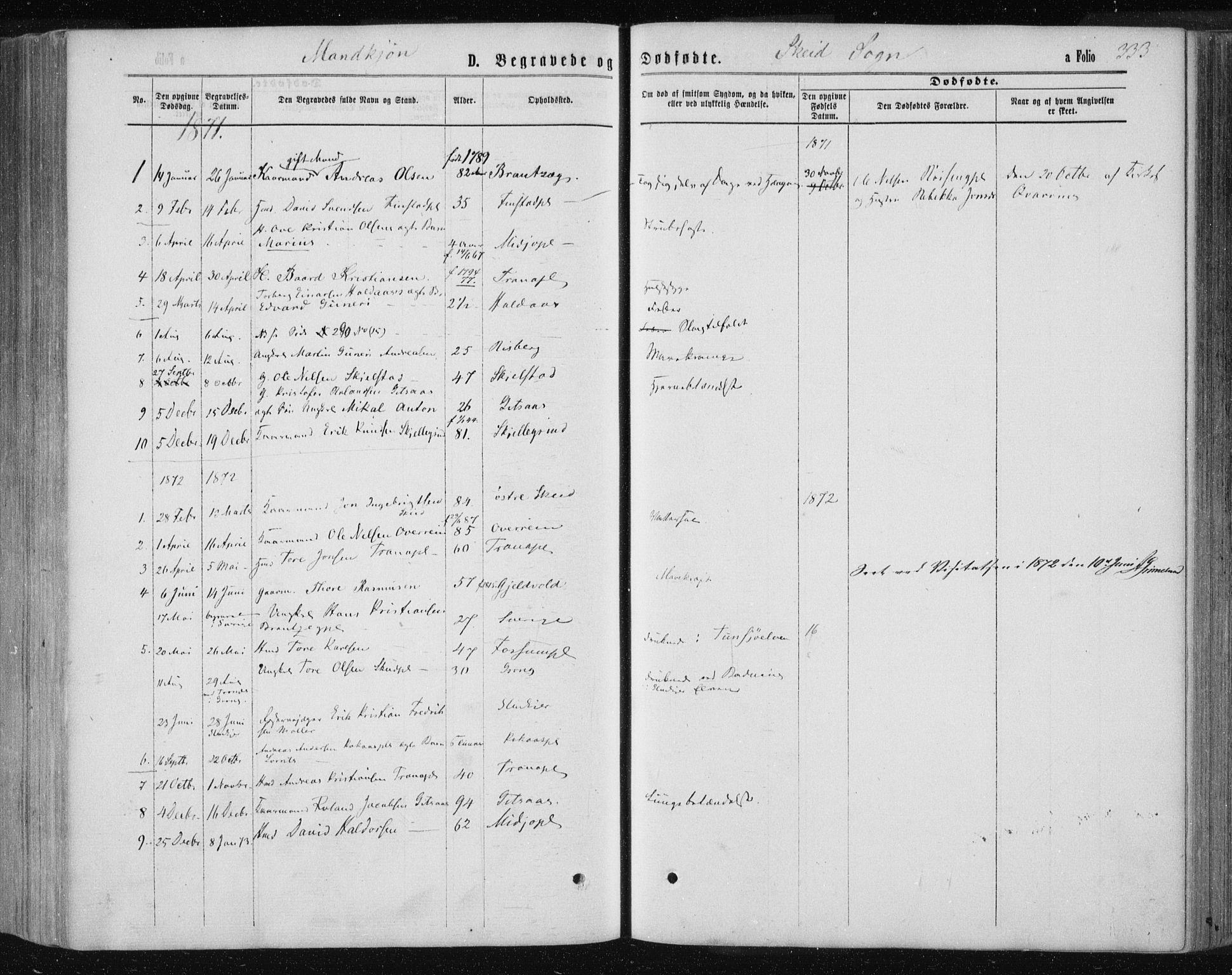 SAT, Ministerialprotokoller, klokkerbøker og fødselsregistre - Nord-Trøndelag, 735/L0345: Ministerialbok nr. 735A08 /2, 1863-1872, s. 333