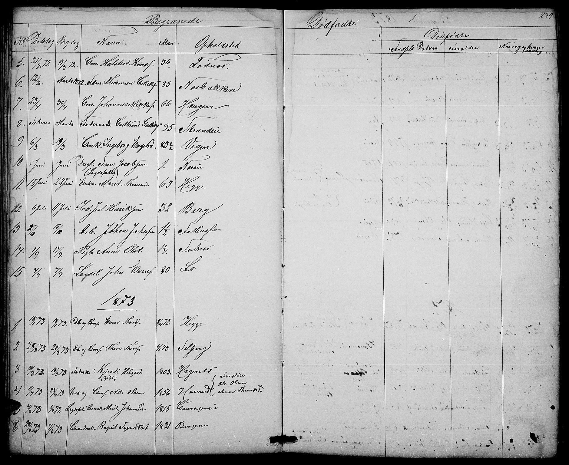 SAH, Nord-Aurdal prestekontor, Klokkerbok nr. 3, 1842-1882, s. 239