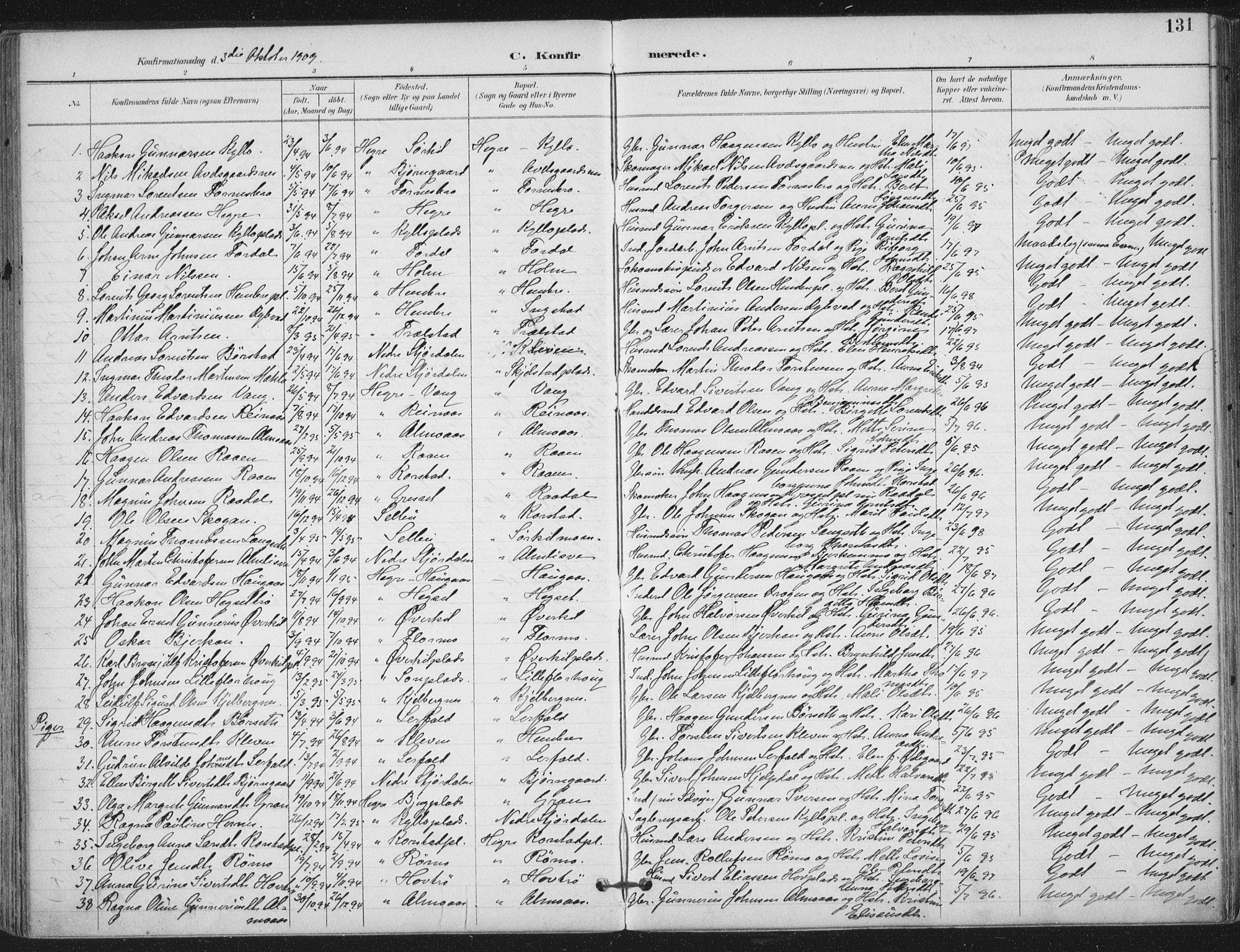 SAT, Ministerialprotokoller, klokkerbøker og fødselsregistre - Nord-Trøndelag, 703/L0031: Ministerialbok nr. 703A04, 1893-1914, s. 131