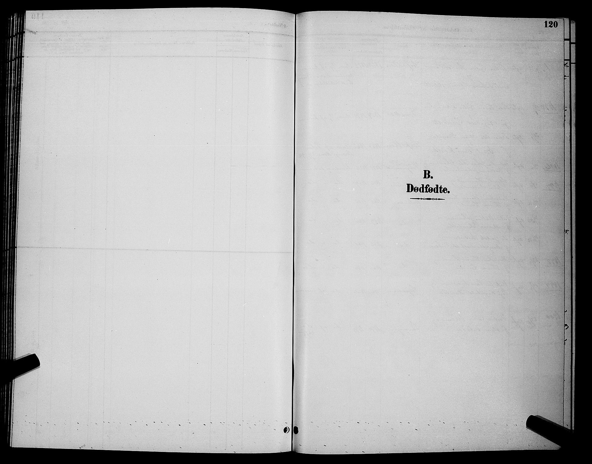 SATØ, Tana sokneprestkontor, H/Hb/L0004klokker: Klokkerbok nr. 4, 1890-1903, s. 120