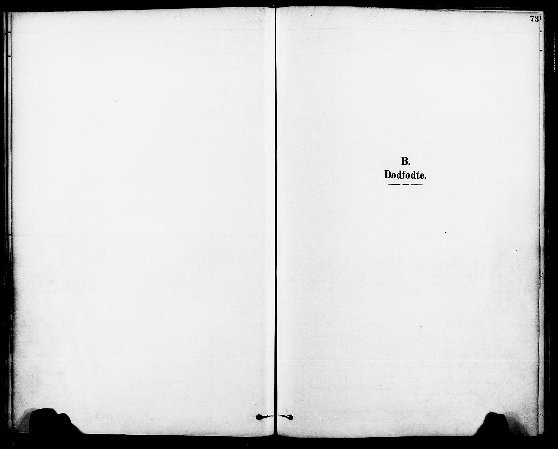 SAT, Ministerialprotokoller, klokkerbøker og fødselsregistre - Nordland, 885/L1205: Ministerialbok nr. 885A06, 1892-1905, s. 73
