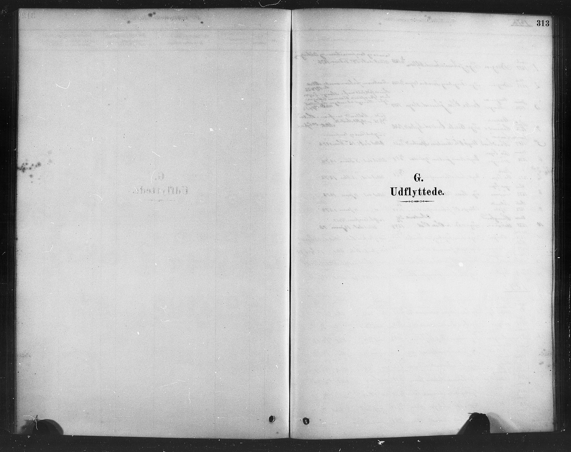 SAB, Herdla Sokneprestembete, H/Haa: Ministerialbok nr. A 3, 1878-1890, s. 313
