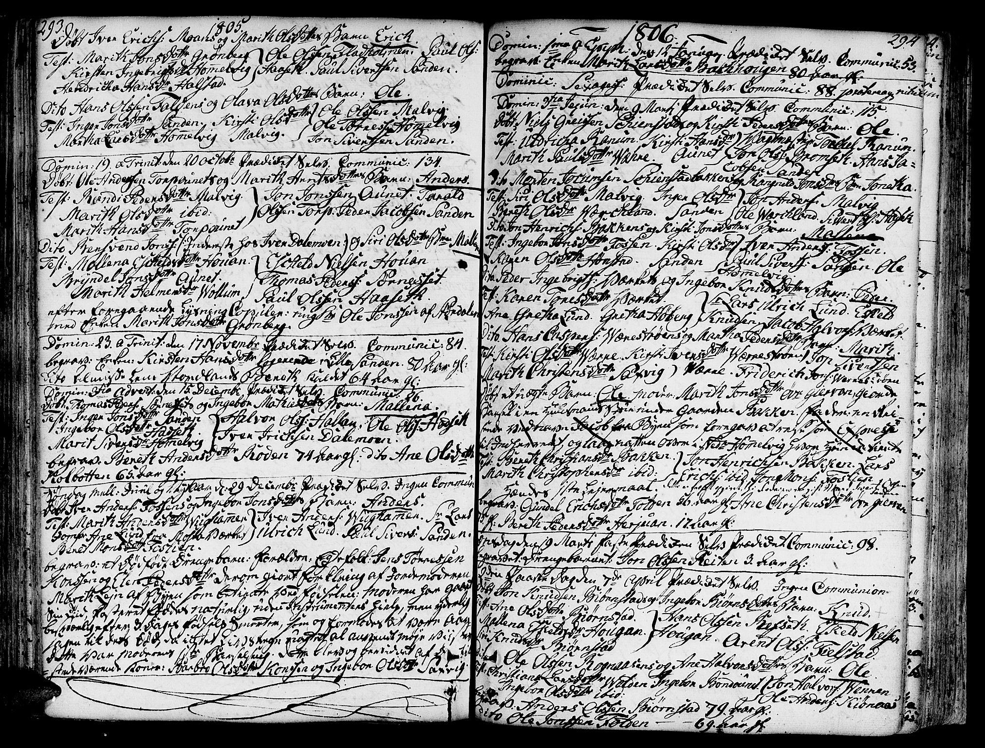 SAT, Ministerialprotokoller, klokkerbøker og fødselsregistre - Sør-Trøndelag, 606/L0281: Ministerialbok nr. 606A02 /2, 1781-1817, s. 293-294