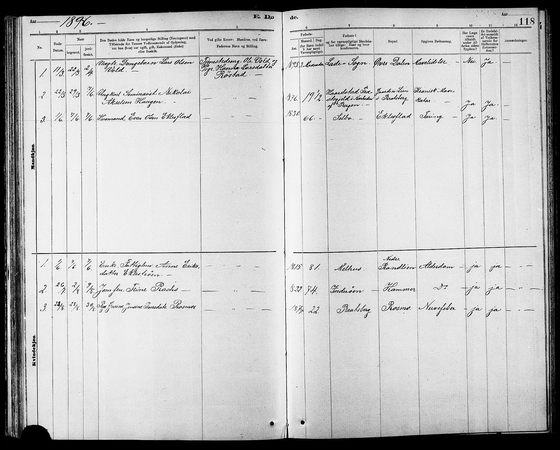 SAT, Ministerialprotokoller, klokkerbøker og fødselsregistre - Sør-Trøndelag, 608/L0341: Klokkerbok nr. 608C07, 1890-1912, s. 118