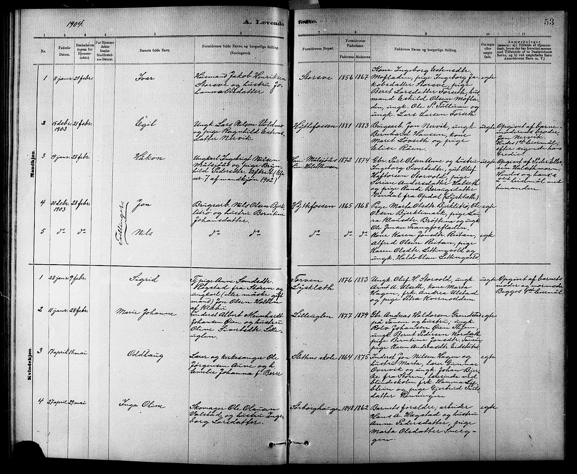SAT, Ministerialprotokoller, klokkerbøker og fødselsregistre - Sør-Trøndelag, 618/L0452: Klokkerbok nr. 618C03, 1884-1906, s. 53