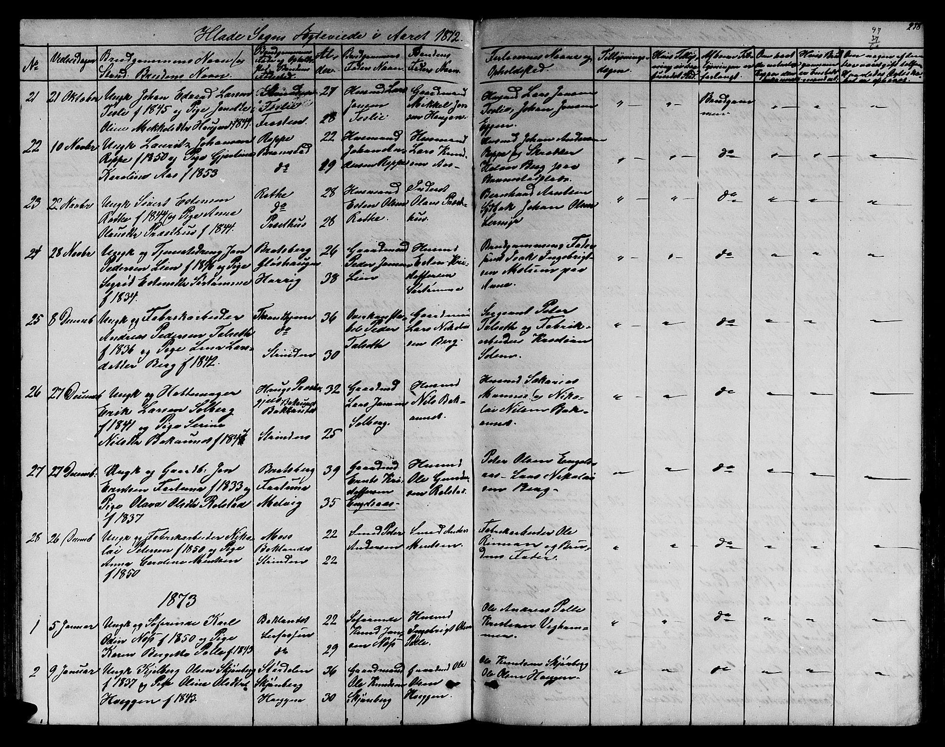 SAT, Ministerialprotokoller, klokkerbøker og fødselsregistre - Sør-Trøndelag, 606/L0311: Klokkerbok nr. 606C07, 1860-1877, s. 238