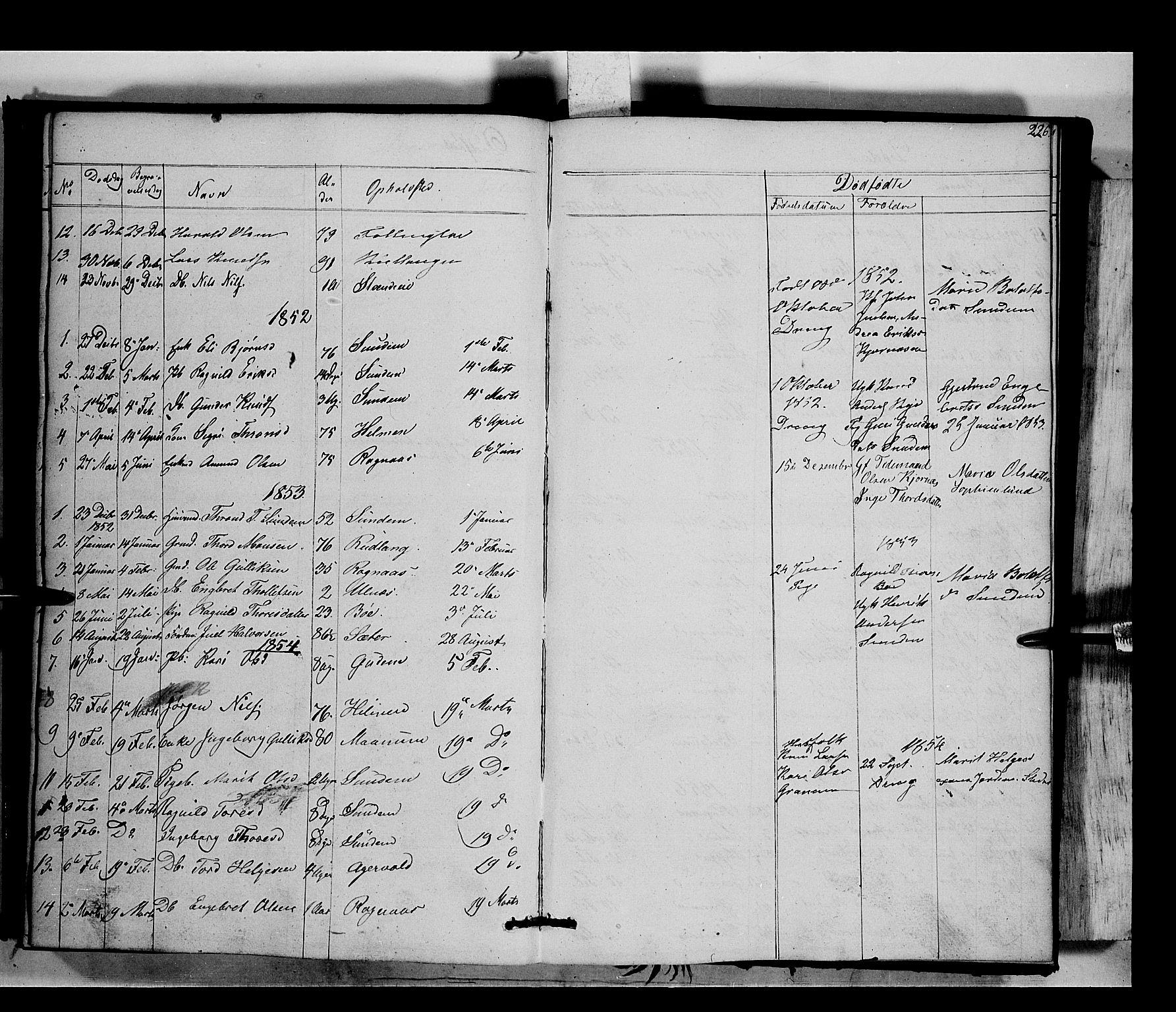SAH, Nord-Aurdal prestekontor, Ministerialbok nr. 6, 1842-1863, s. 226
