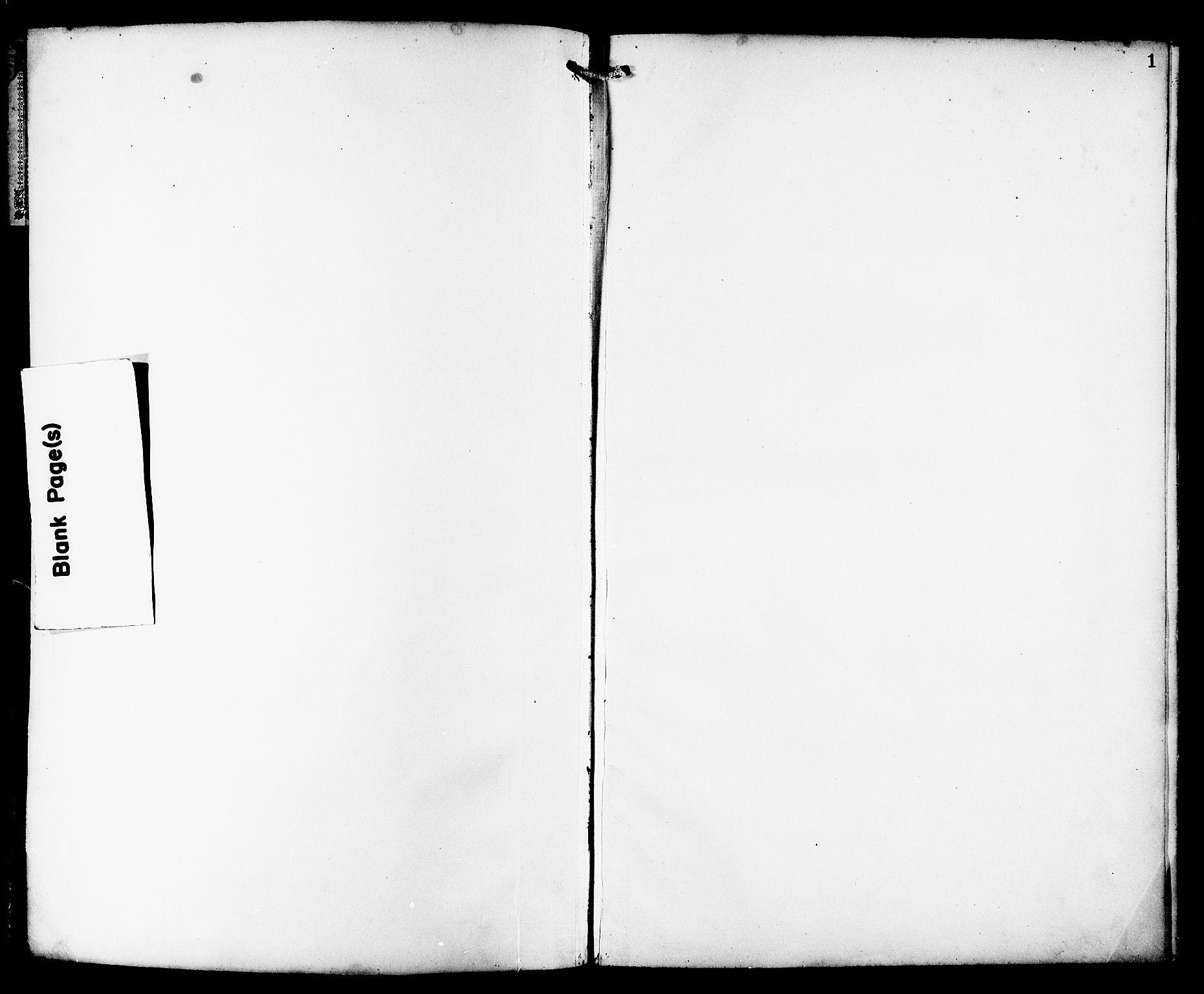 SAT, Ministerialprotokoller, klokkerbøker og fødselsregistre - Sør-Trøndelag, 659/L0746: Klokkerbok nr. 659C03, 1893-1912, s. 1