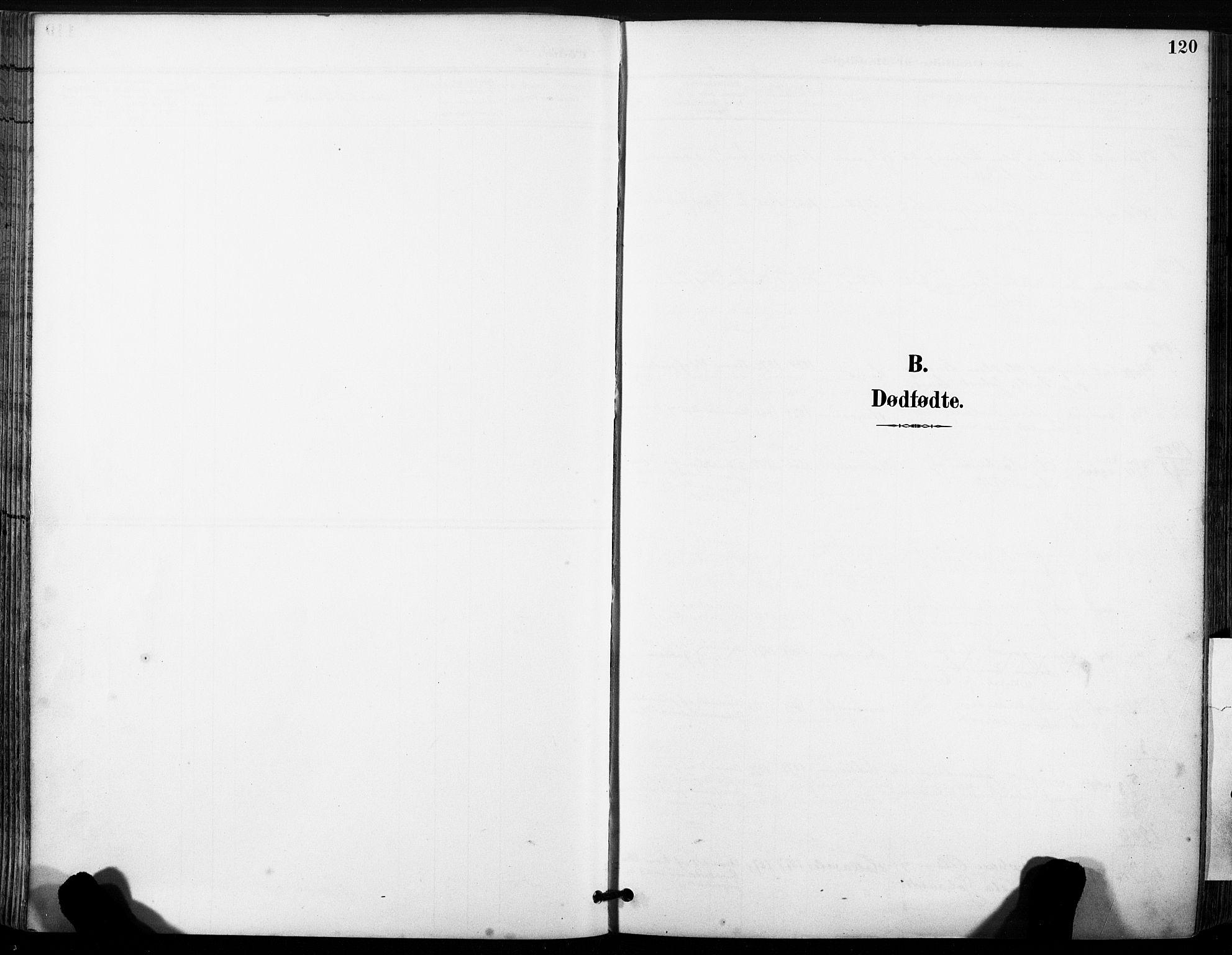 SAT, Ministerialprotokoller, klokkerbøker og fødselsregistre - Sør-Trøndelag, 630/L0497: Ministerialbok nr. 630A10, 1896-1910, s. 120