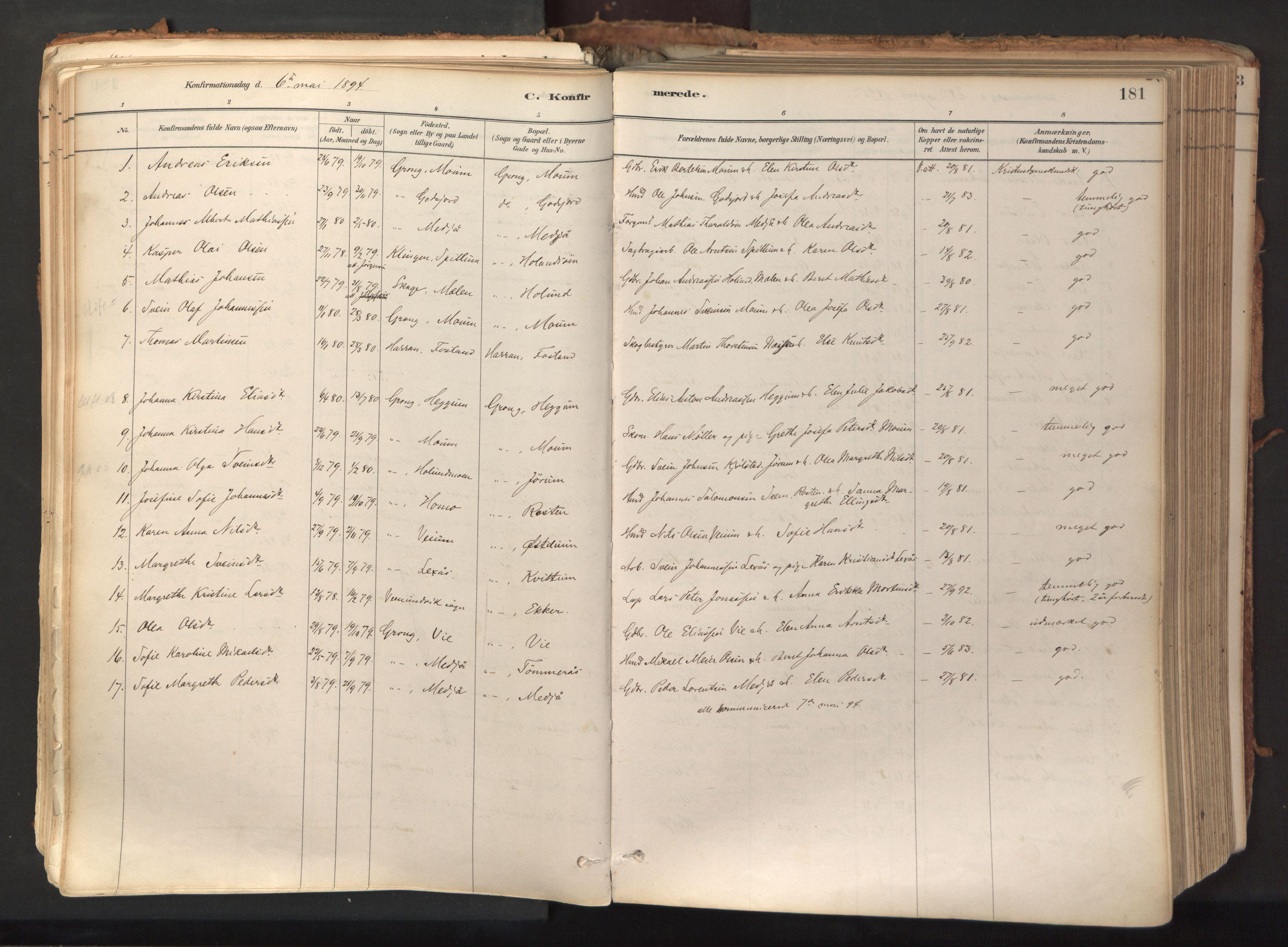 SAT, Ministerialprotokoller, klokkerbøker og fødselsregistre - Nord-Trøndelag, 758/L0519: Ministerialbok nr. 758A04, 1880-1926, s. 181