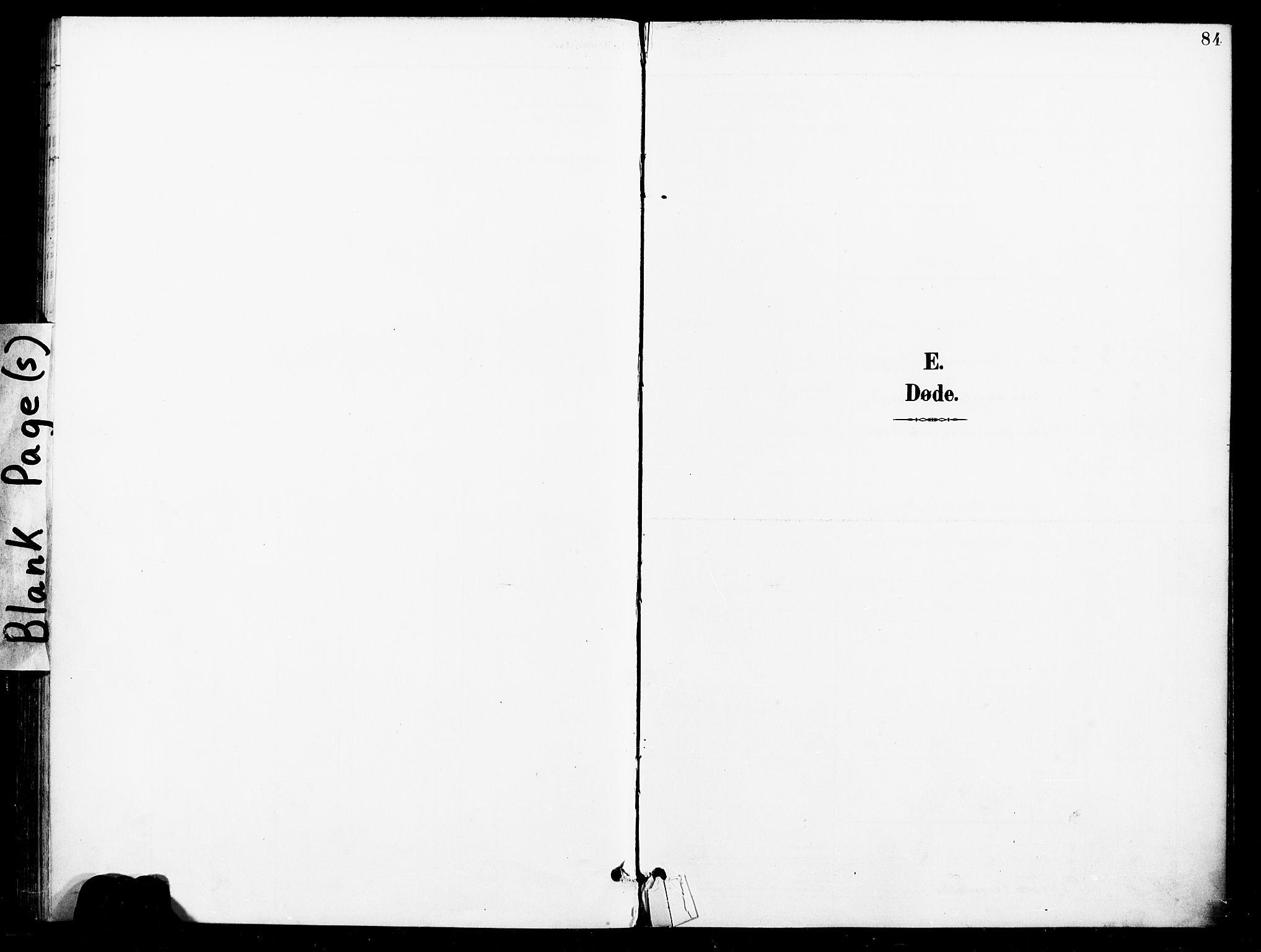 SAT, Ministerialprotokoller, klokkerbøker og fødselsregistre - Nord-Trøndelag, 740/L0379: Ministerialbok nr. 740A02, 1895-1907, s. 84