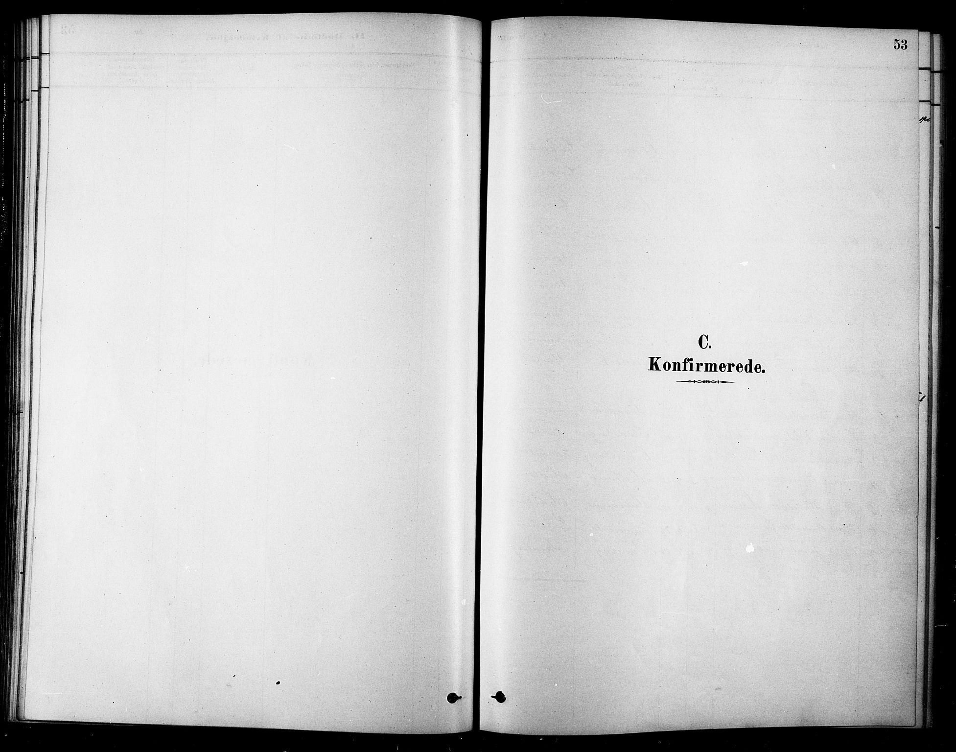 SAT, Ministerialprotokoller, klokkerbøker og fødselsregistre - Sør-Trøndelag, 685/L0972: Ministerialbok nr. 685A09, 1879-1890, s. 53
