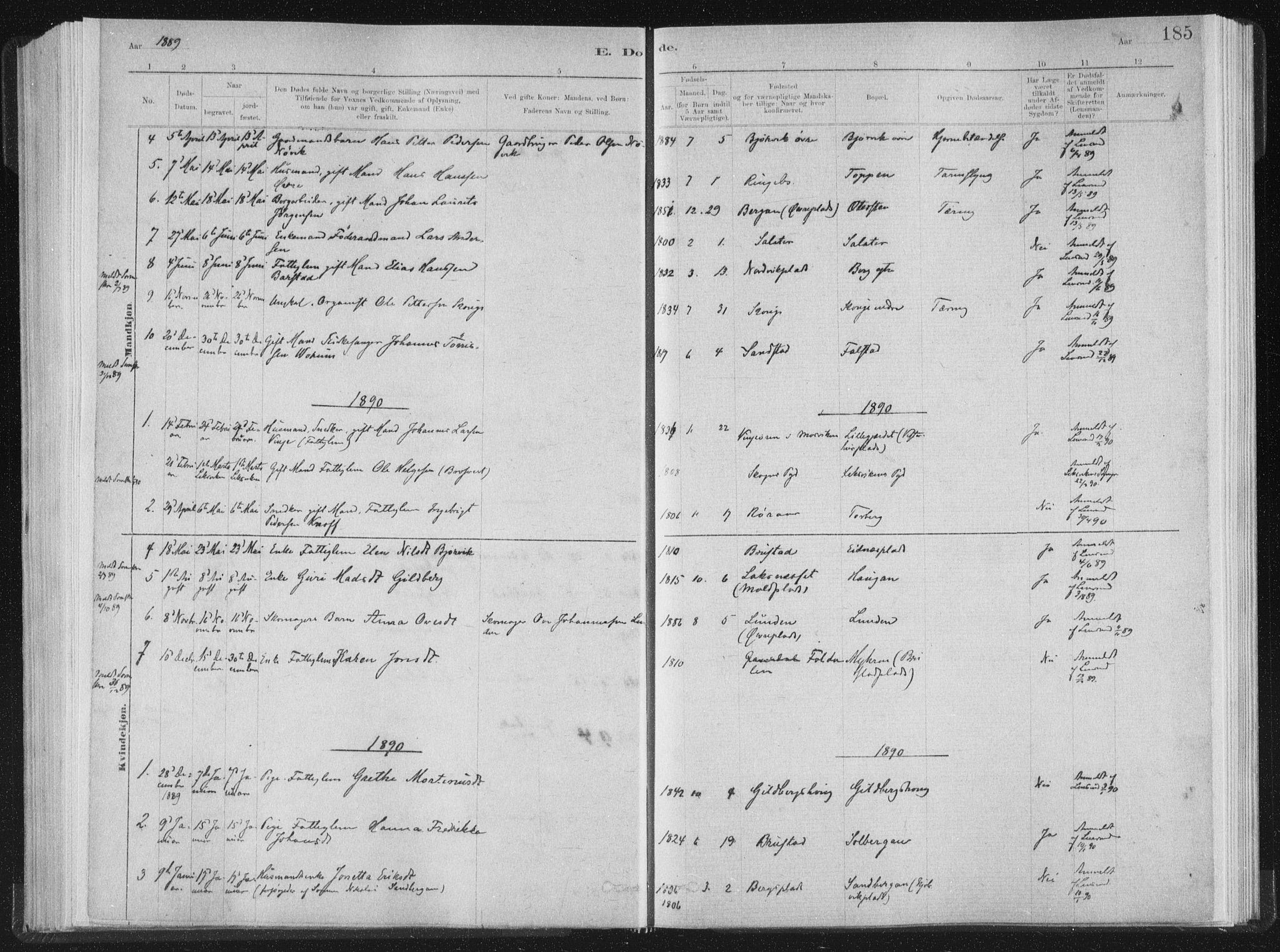 SAT, Ministerialprotokoller, klokkerbøker og fødselsregistre - Nord-Trøndelag, 722/L0220: Ministerialbok nr. 722A07, 1881-1908, s. 185