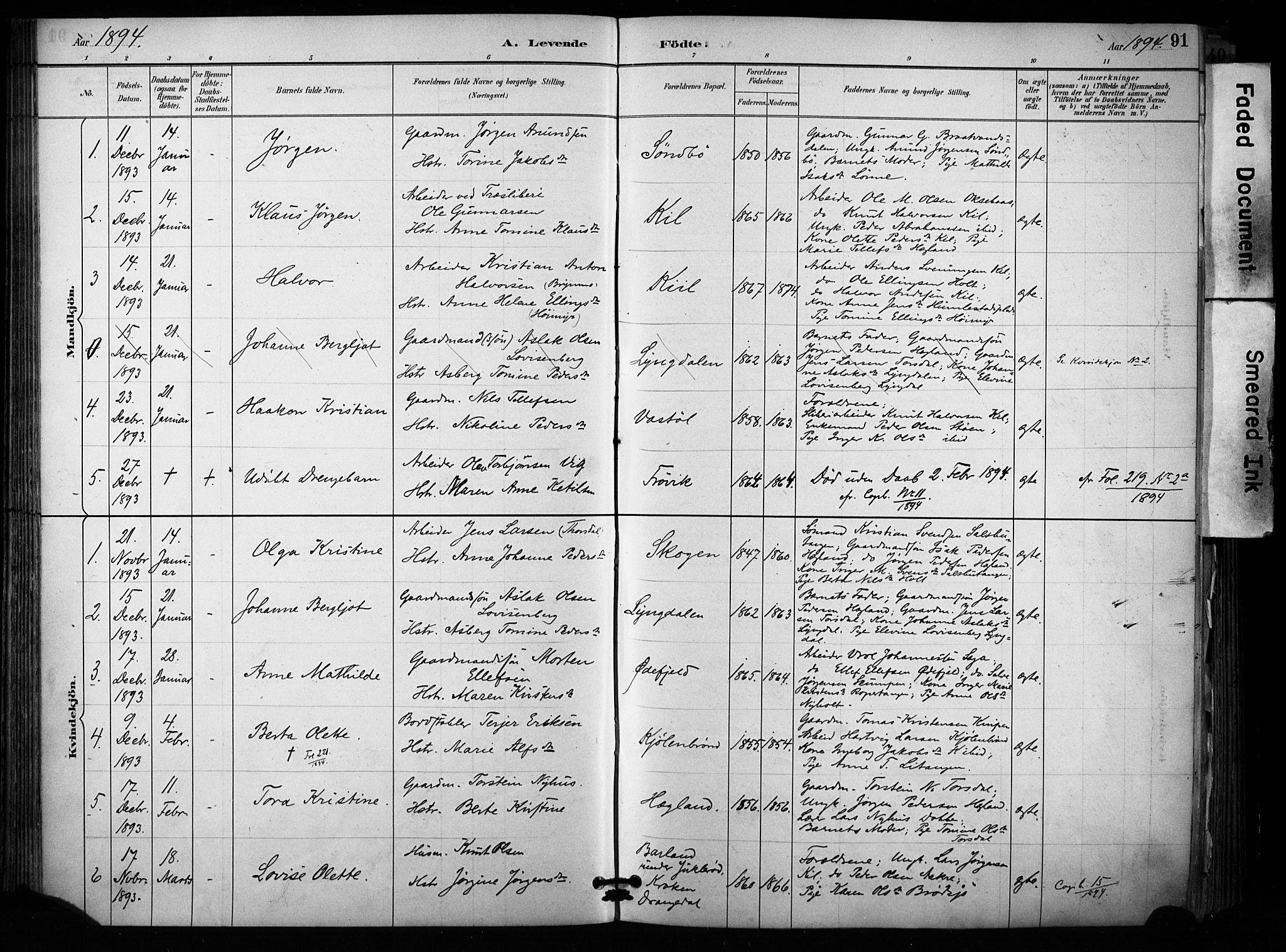 SAKO, Sannidal kirkebøker, F/Fa/L0015: Ministerialbok nr. 15, 1884-1899, s. 91