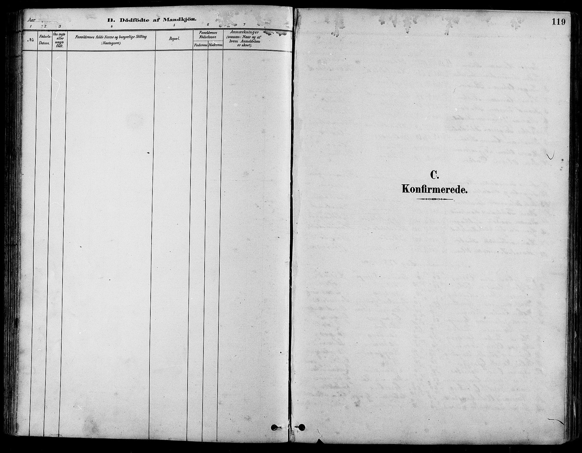 SAH, Nord-Fron prestekontor, Klokkerbok nr. 5, 1884-1914, s. 119